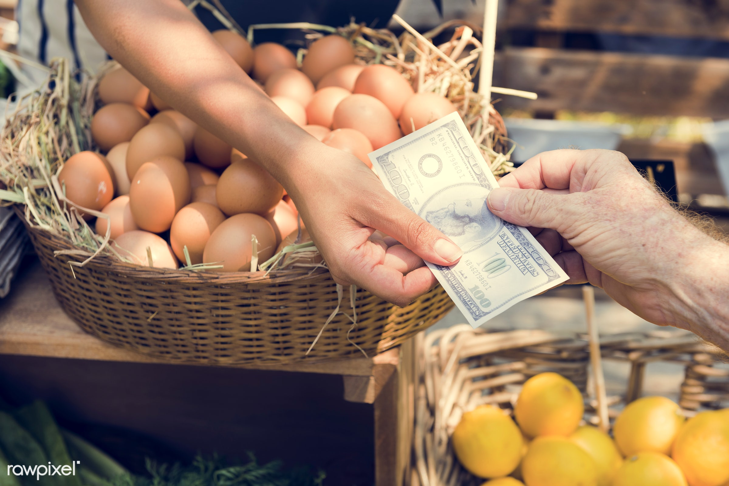 grocery, shop, store, nutritious, trade, egg, people, farmer, fresh, woman, healthy eating, money, marketplace, cheerful,...