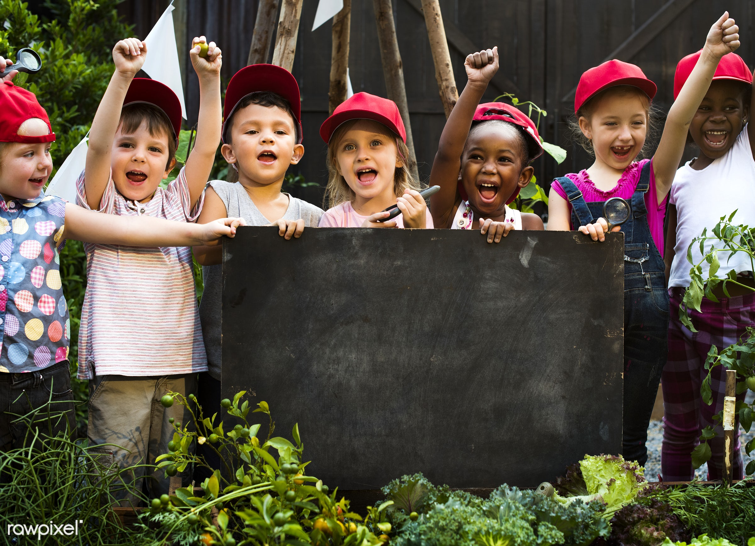 activity, african descent, board, cap, casual, caucasian, cheerful, child, childhood, copy space, diversity, emotion,...