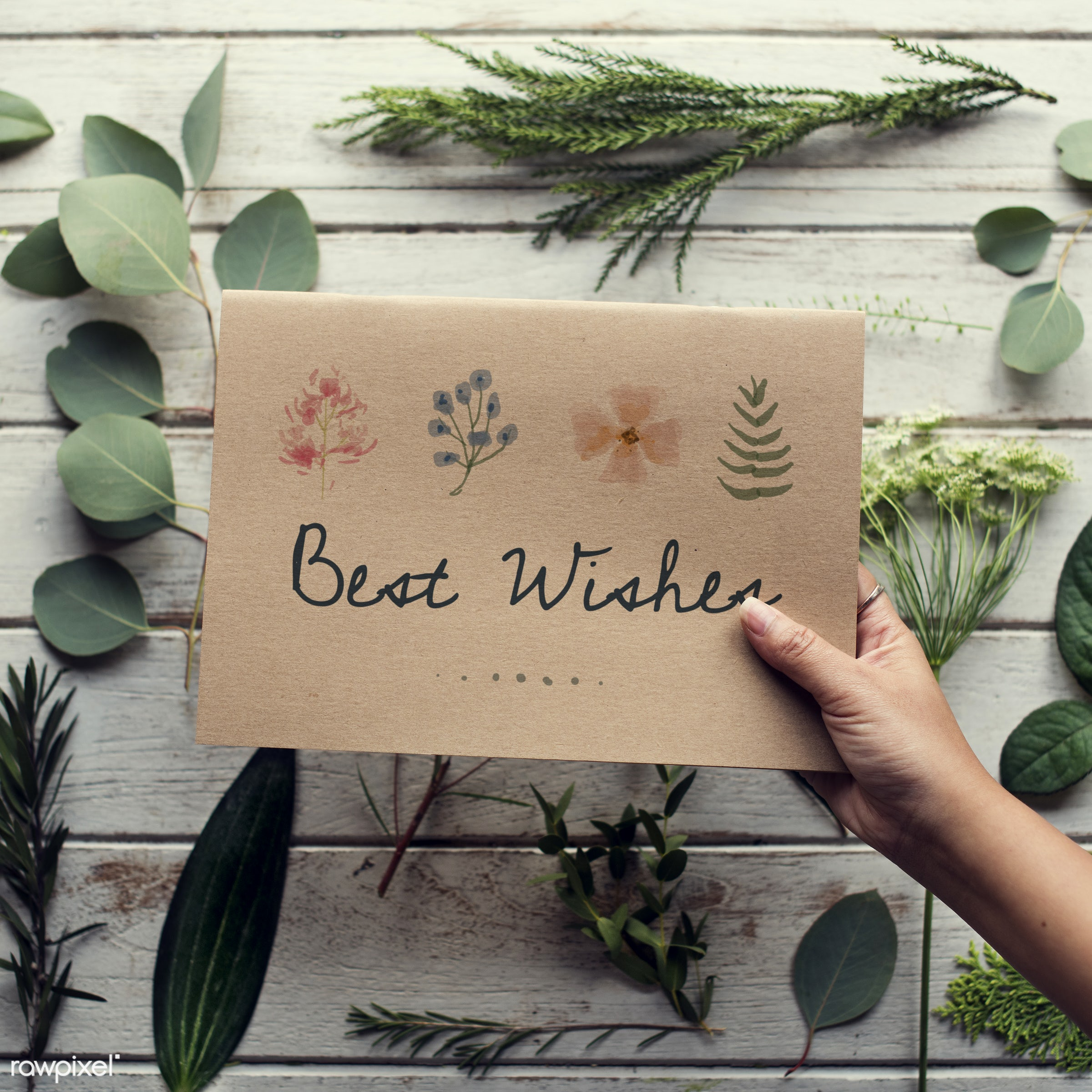 detail, gift, decorative, wish, handicraft, writing, show, leaf, leaves, hand, nature, hands, attractive, written, write,...