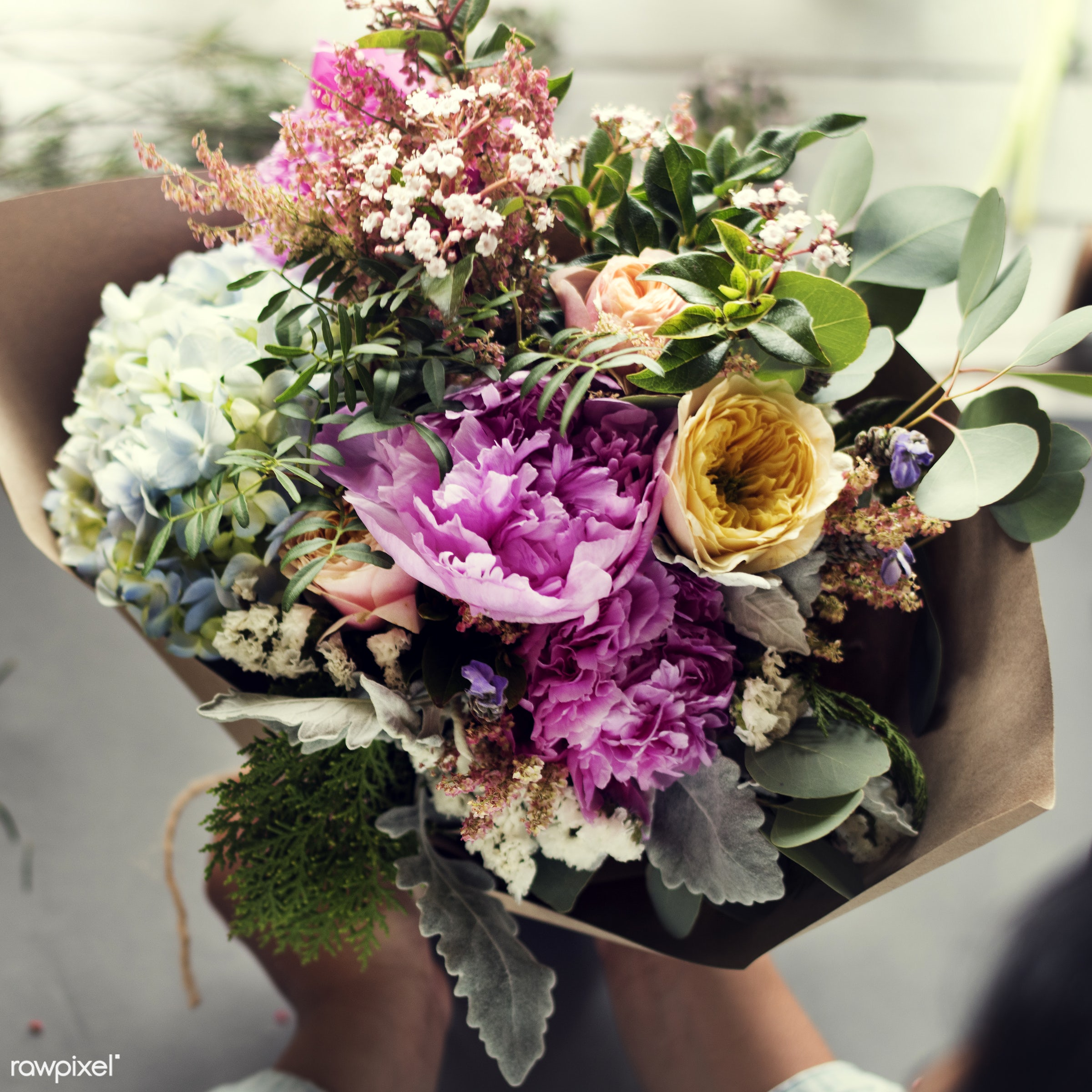 plant, bouquet, person, wrapped, holding, paper, people, blossom, fresh, hands, aerial view, flower, decoration, flora,...