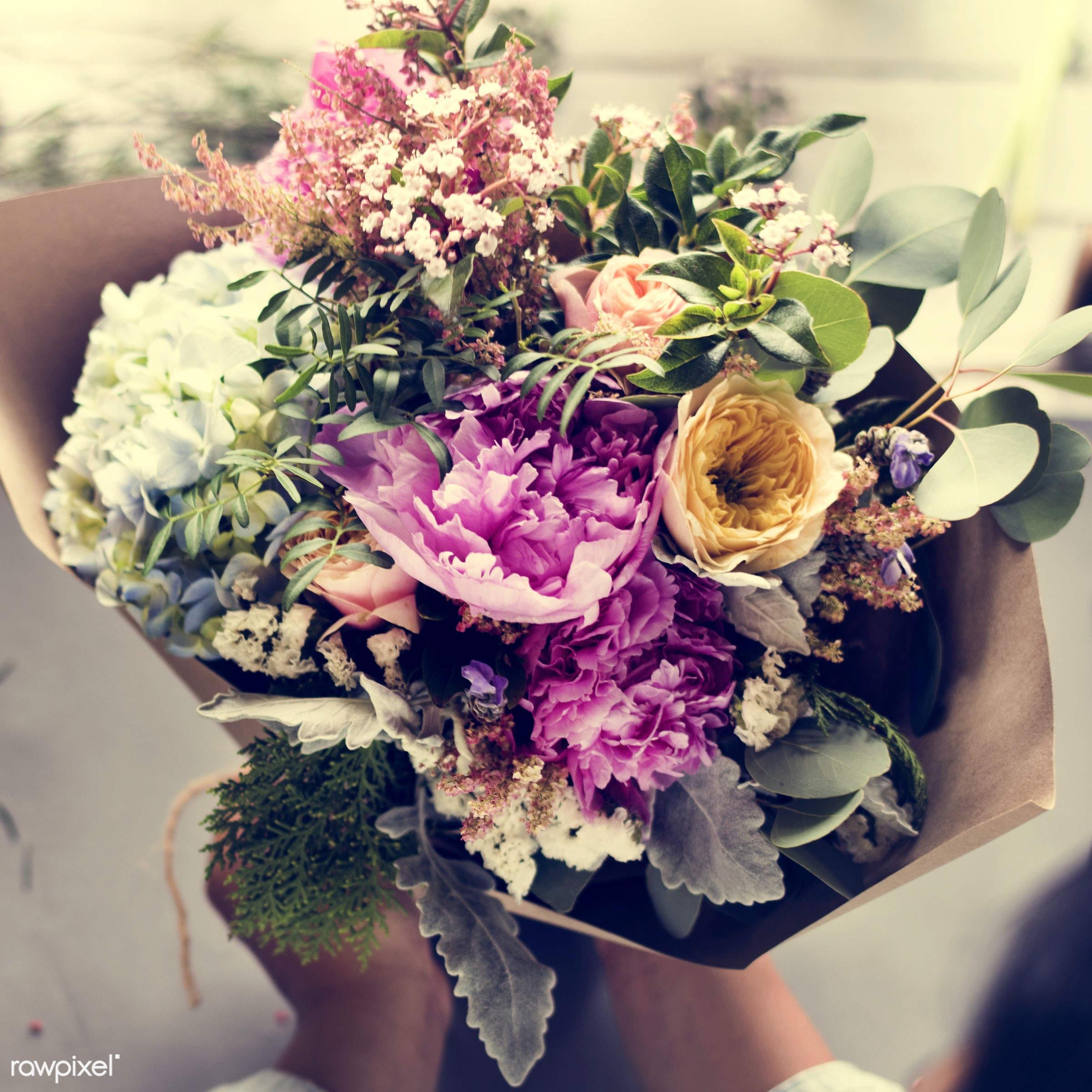 plant, bouquet, person, wrapped, holding, paper, people, blossom, hands, fresh, aerial view, flower, decoration, flora,...