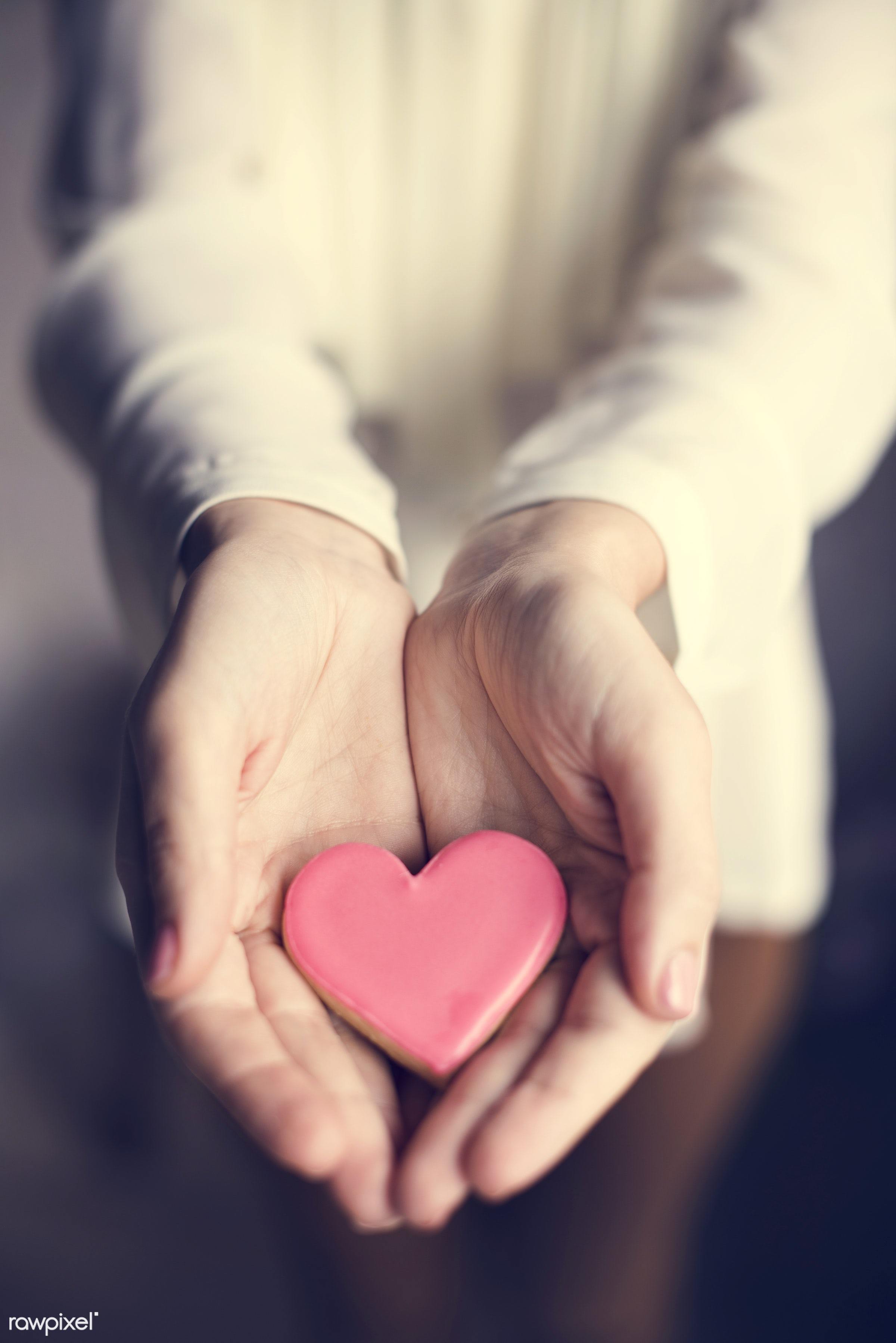 person, holding, people, baked, love, girl, bakery, hands, woman, pink, cookies, carry, dessert, heart, romance, human hand...