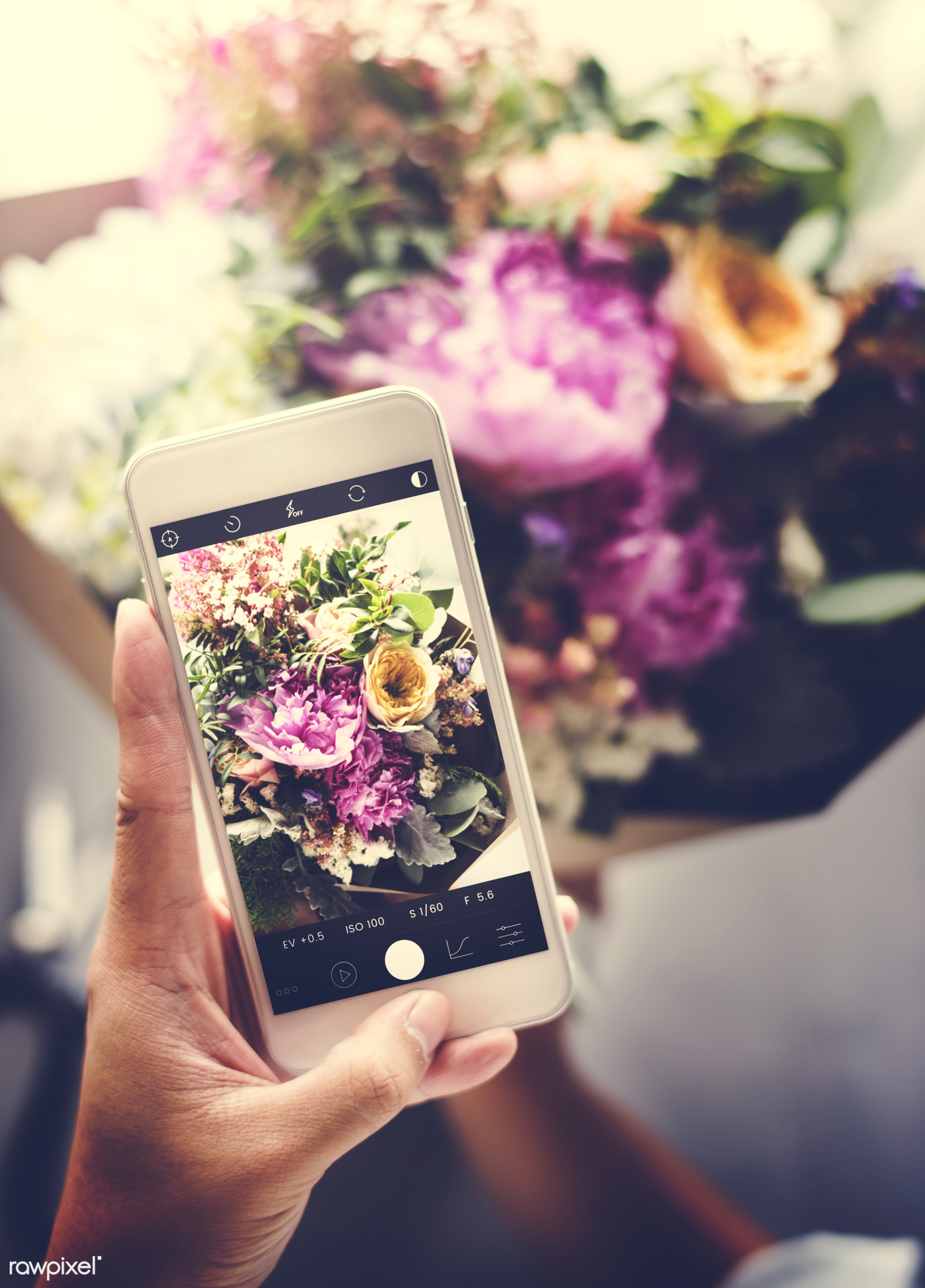 using, detail, person, phone, technology, holding, snap, show, people, decor, nature, capture, flowers, screen, refreshment...