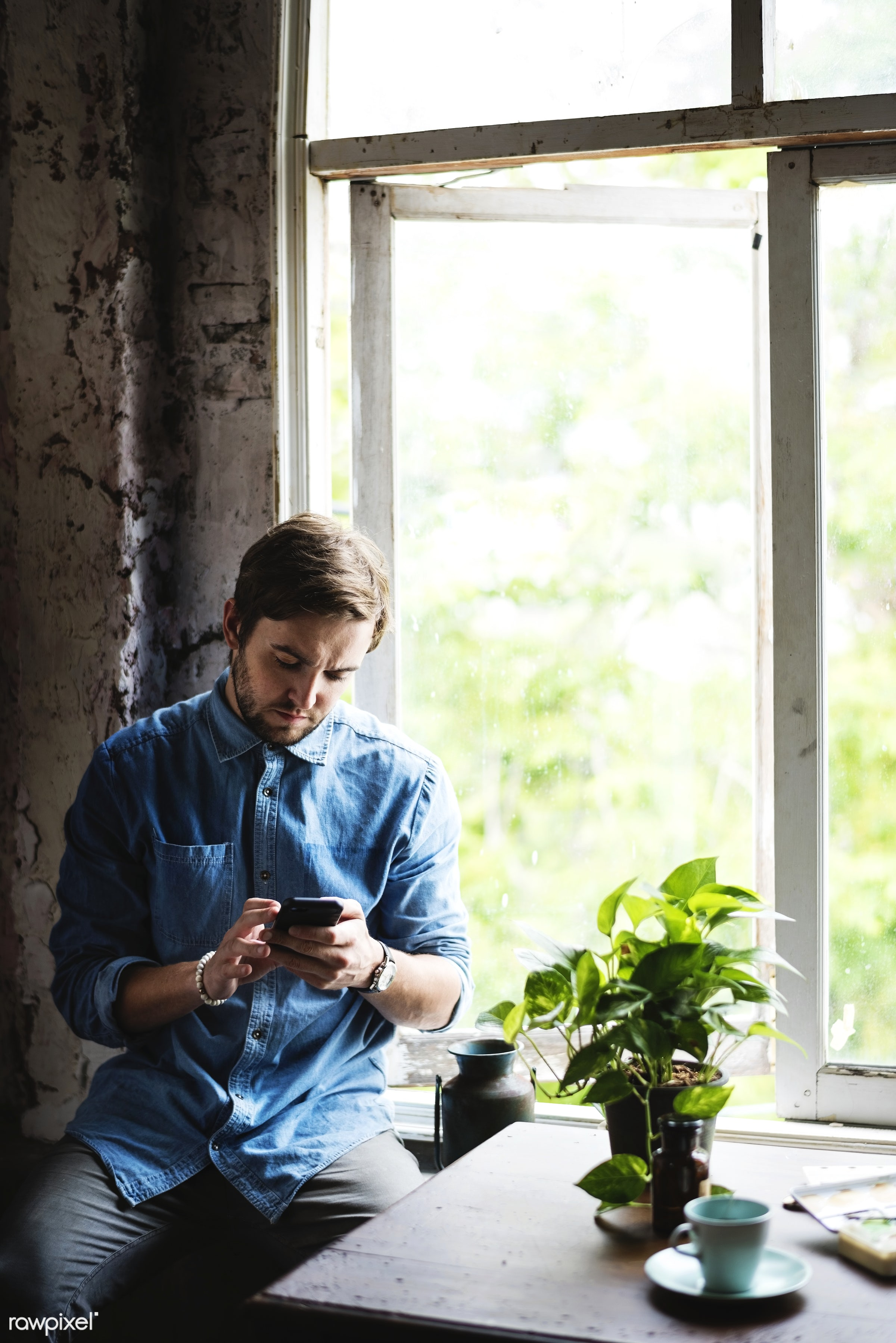 Caucasian guy using mobile phone sitting by the window - mobile, phone, smartphone, wireless, technology, plants, sitting,...