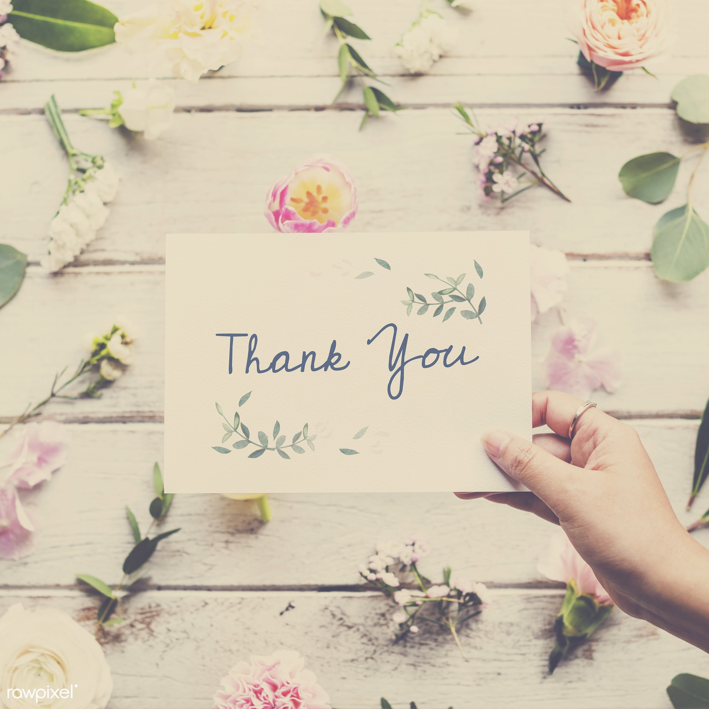 thank you, detail, person, wish, show, people, decor, nature, card, flowers, greeting, hold, refreshment, florist, present,...