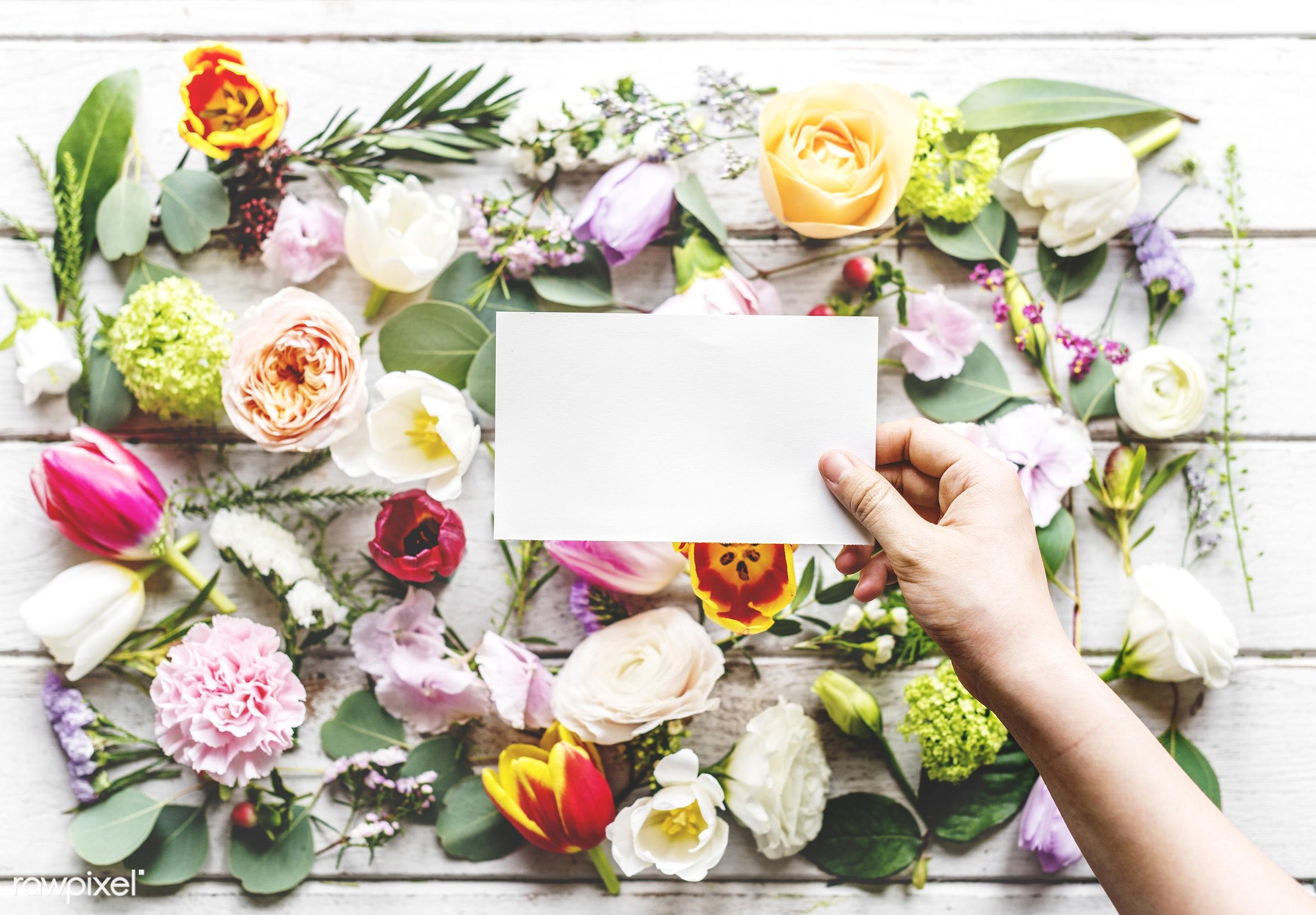 aromatic, arrangement, art, beautiful, beauty, blank, bloom, blossom, collection, copy space, copyspace, craft, decorative,...