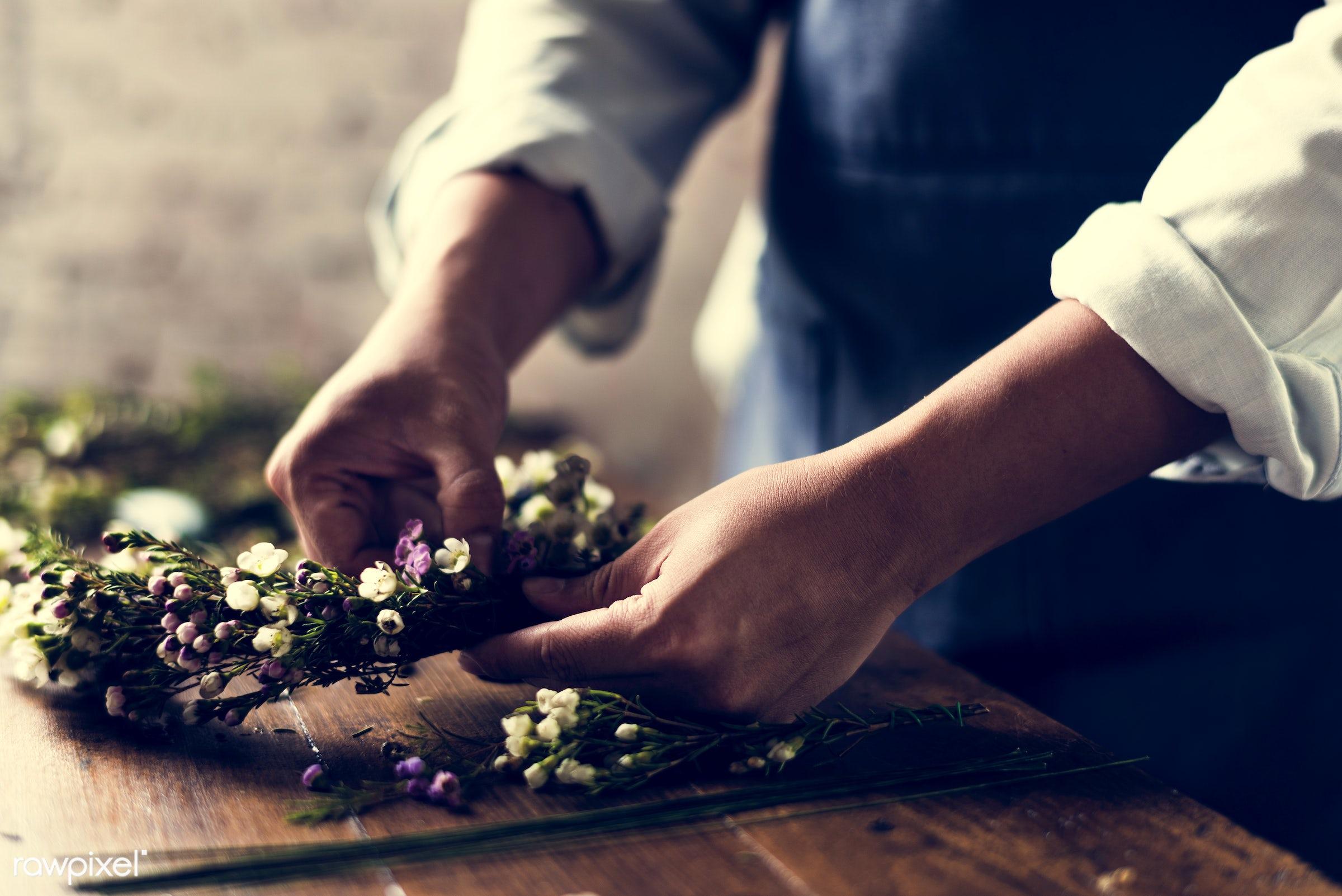 shop, festive, person, detail, decorative, colorful, events, plants, spring, people, blossom, wax flower, decor, nature,...
