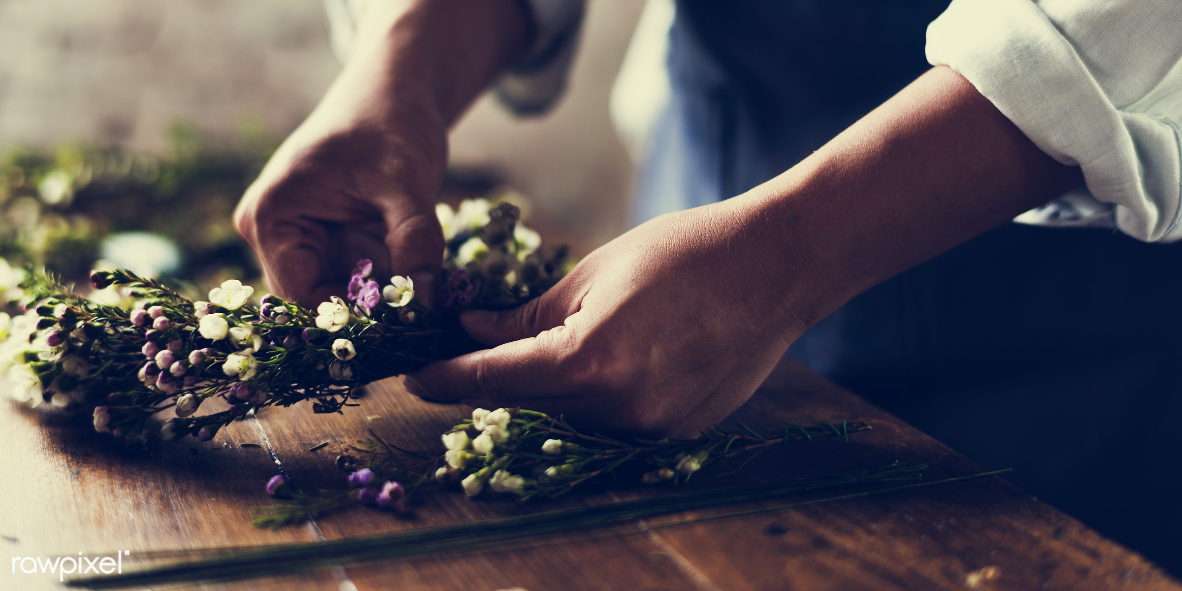 plant, person, holding, crown, daisy, floral garland, people, blossom, headband, hands, fresh, flower, decoration, flora,...