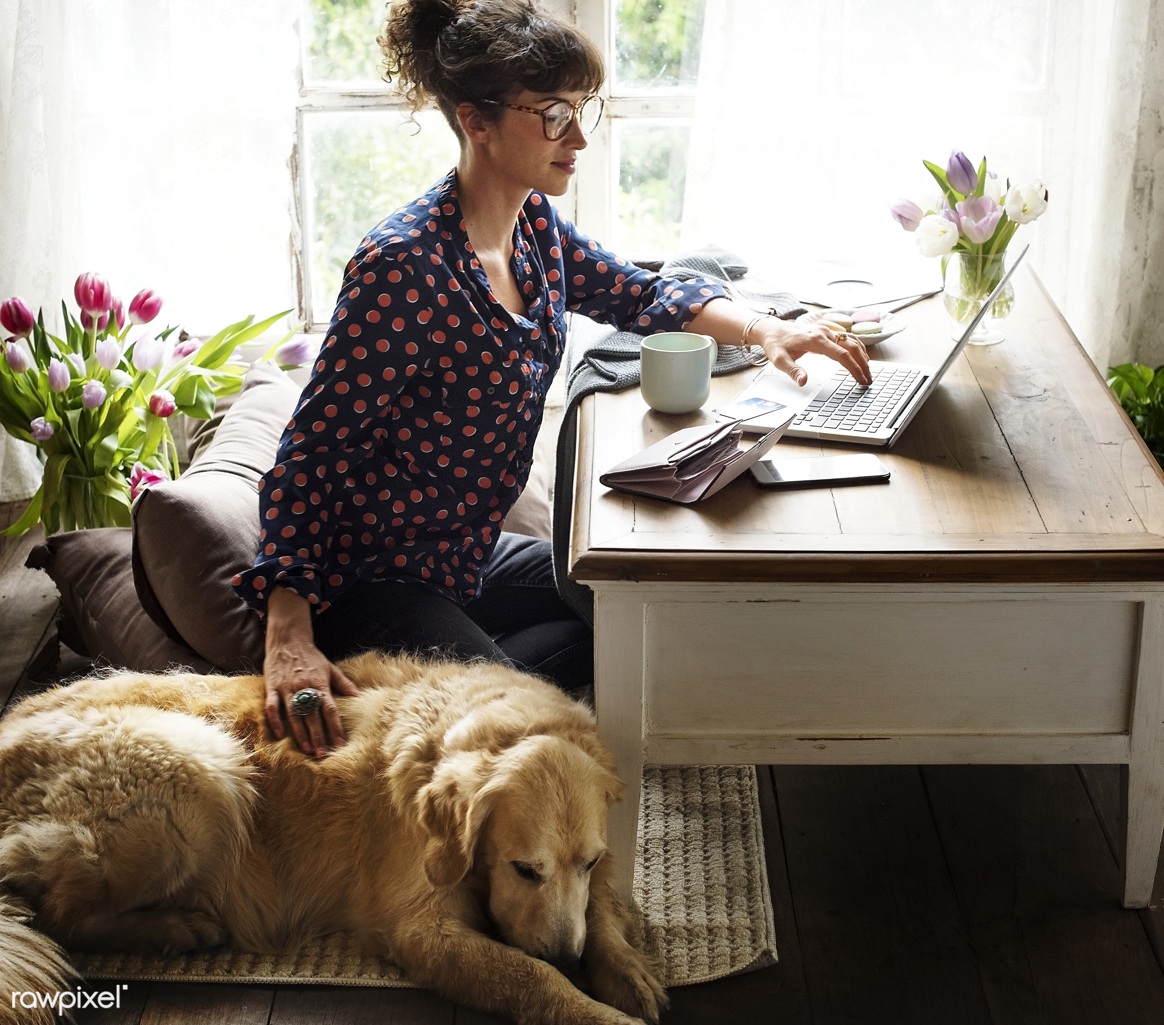 Woman working at home with her dog - blogger, dog, internet, woman, pet, home, freelancer, office, desk, blogging, working,...