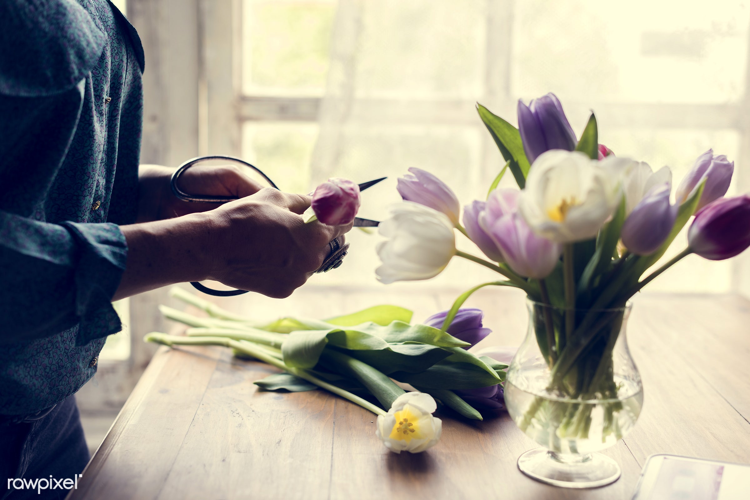 person, workspace, workplace, leaf, desk, beauty, creativity, people, blossom, nature, fresh, hands, woman, refresh, flower...
