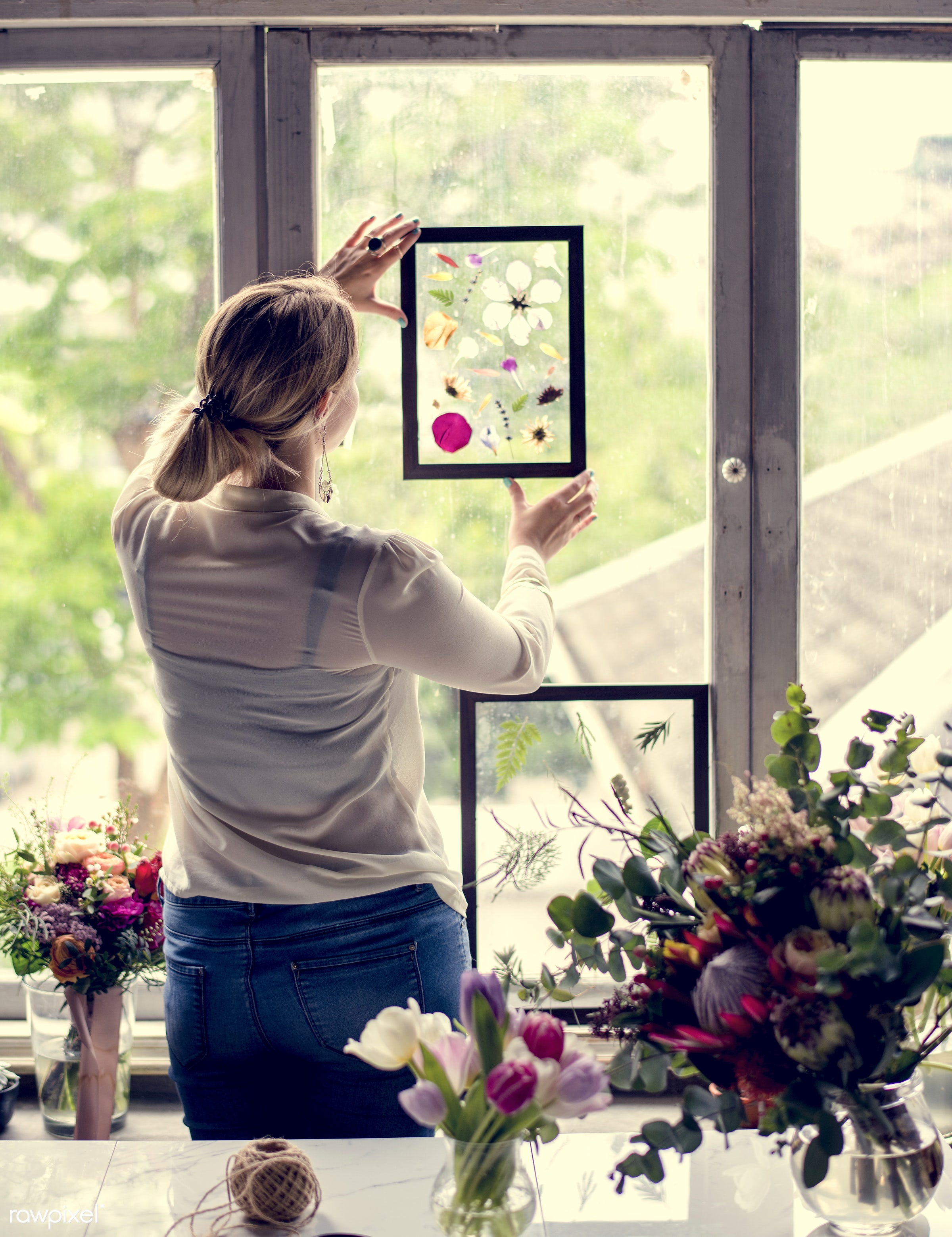 plant, shop, dried plant, person, holding, desk, beauty, leaf, creativity, people, blossom, nature, fresh, woman, pressed...