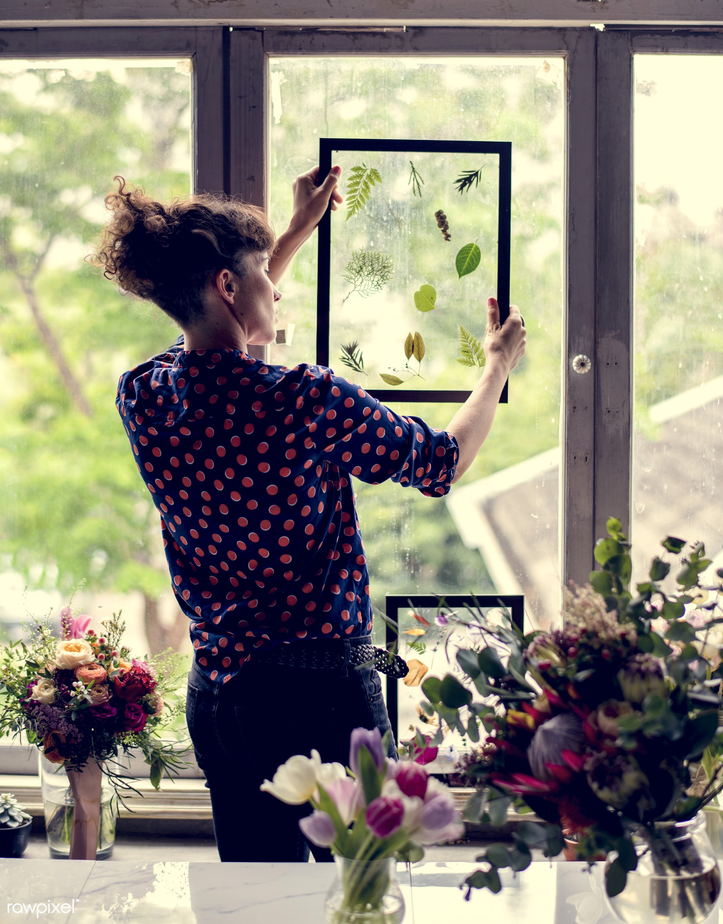 plant, shop, person, dried plant, holding, leaf, beauty, desk, people, creativity, blossom, nature, fresh, woman, pressed...