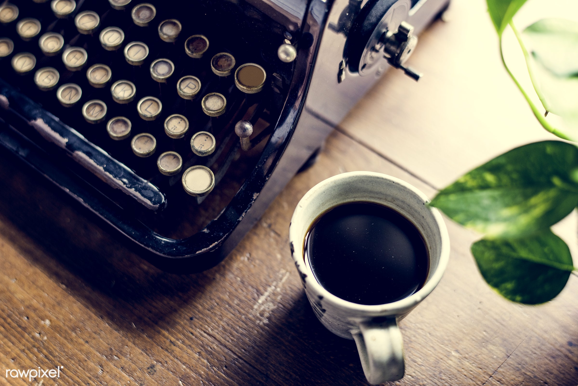cup, plant, nobody, old, paper, data, typescript, retro, type, story, author, document, ancient, style, old fashion,...