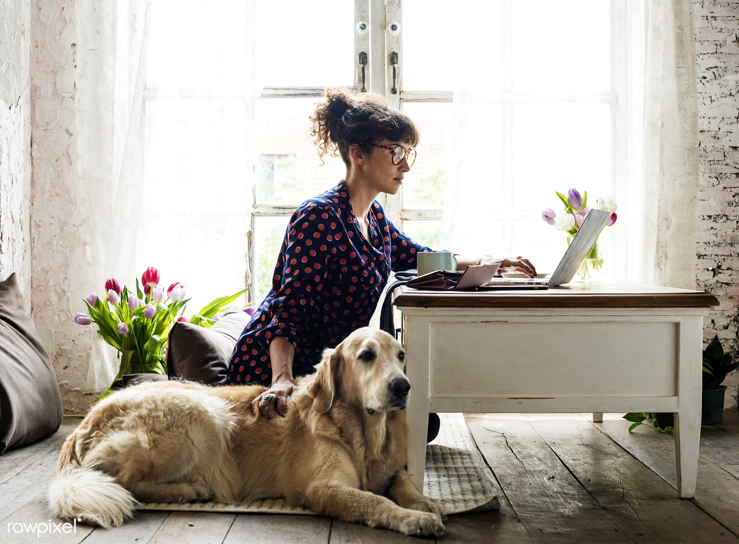 Woman working at home with her dog - dog, blogger, blogging, pet, freelancer, woman, animal, attach, attached, coffee, desk...