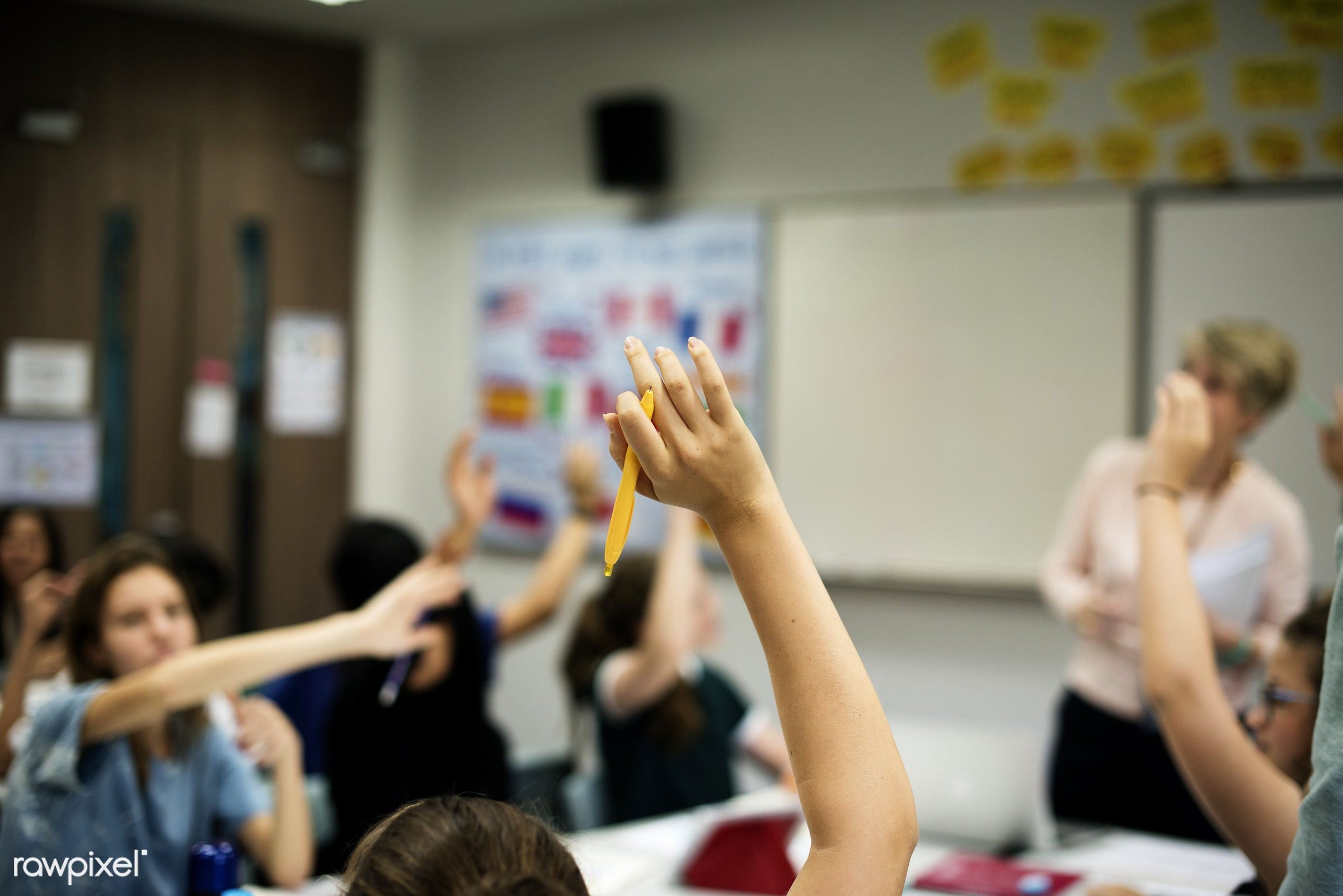 person, arms raised, study, people, friends, young adult, teenager, asking, students, diversity, high school, teen, answer,...