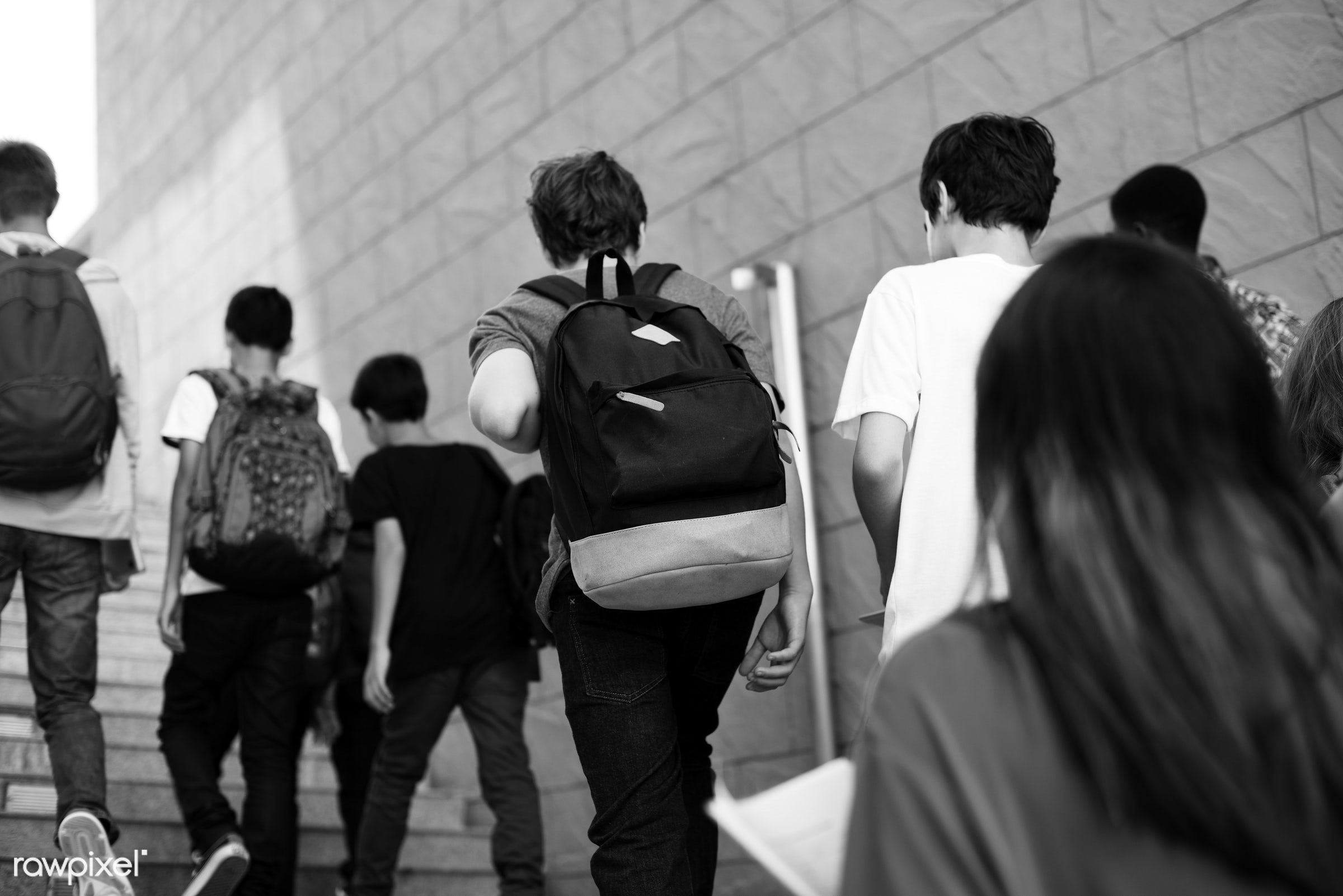 girls, walking, students, diversity, building, steps, up, school, stairway, casual, boys, staircase, path, group, wall,...