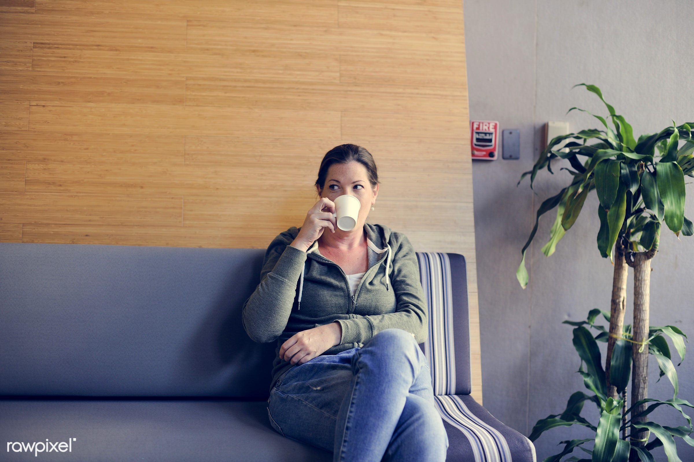 Startup Business Drinking Coffee During Office Break Time - adult, america, american, beverage, break, british, business,...