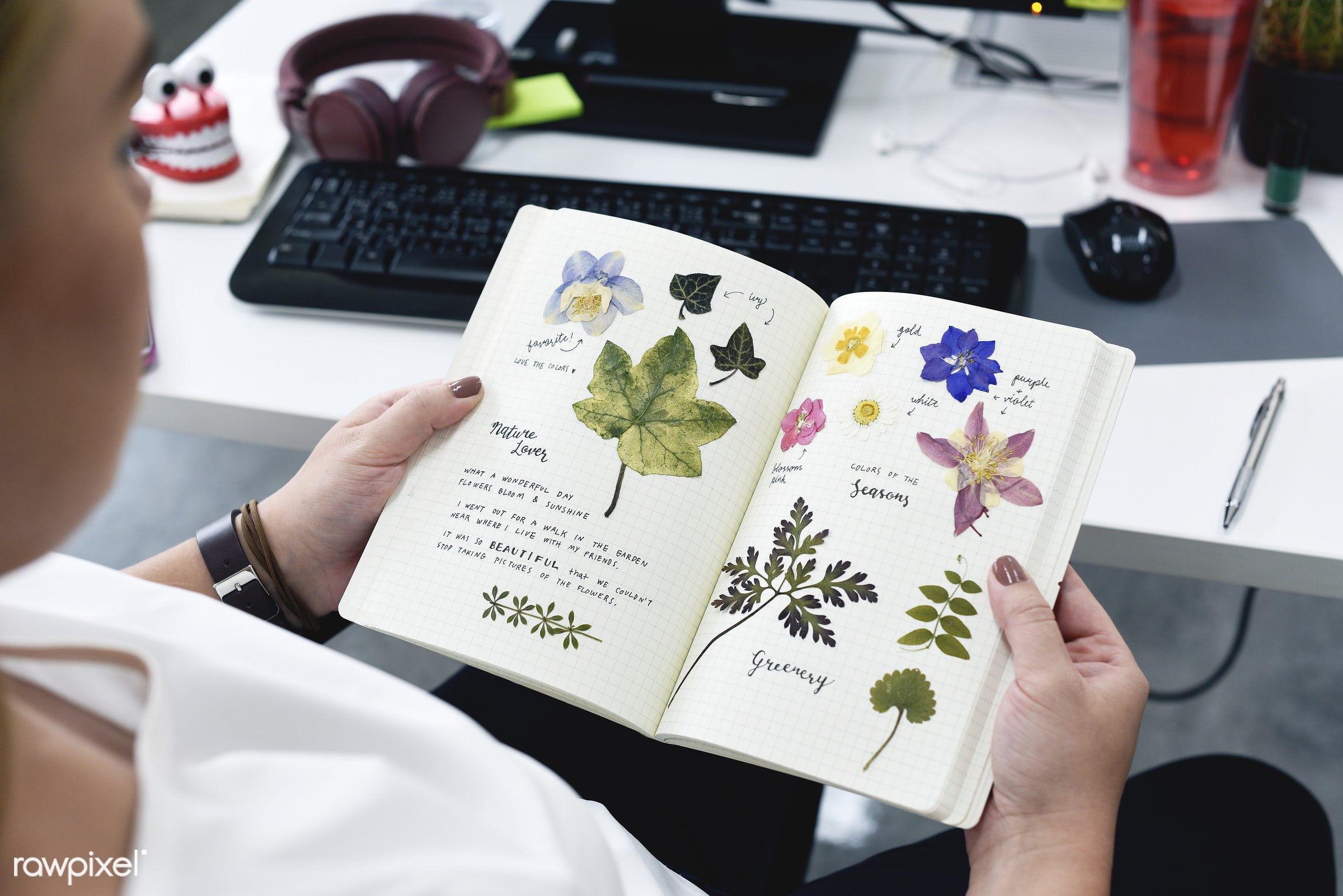 book, collection, computer, desk, diary, dried, entry, floral, flowers, handicraft, handmade, hands, hobby, holding, journal...
