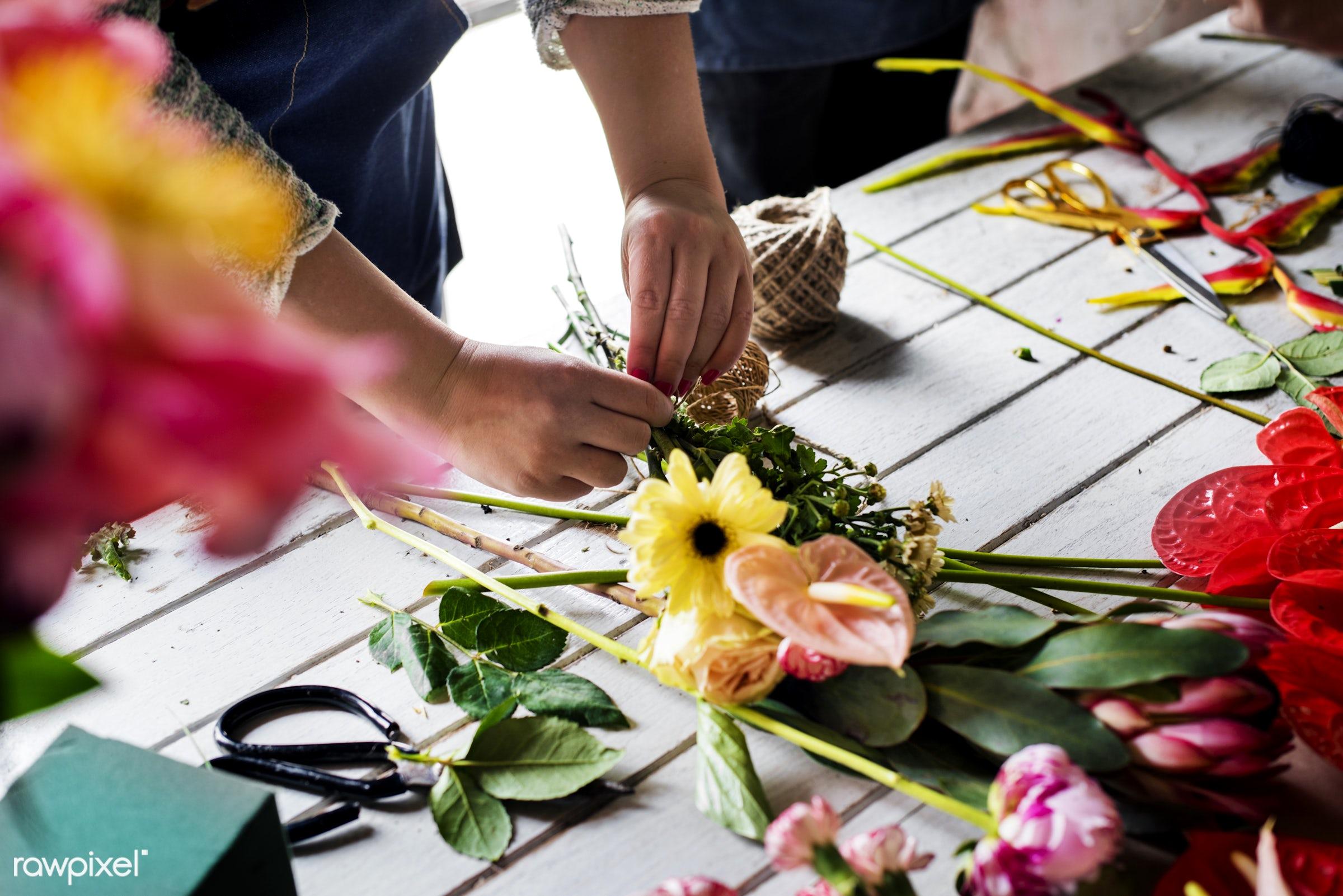 plant, person, decoration, flora, refreshment, leisure, flower shop, florist, recreational, fresh, natural, flower