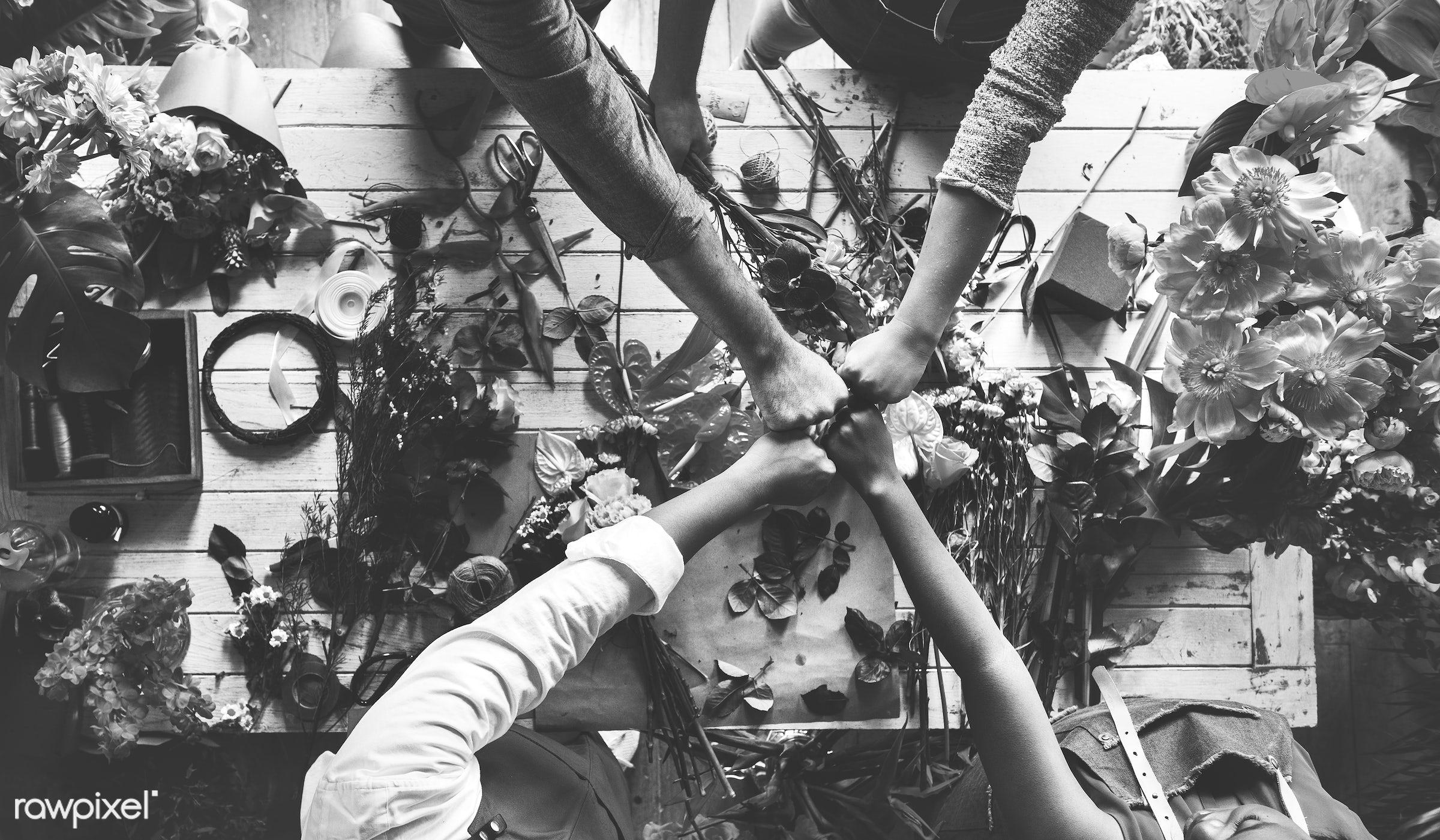 plant, diverse, people, teamwork, friends, fresh, hands, cooperation, aerial view, flower, decoration, flora, refreshment,...