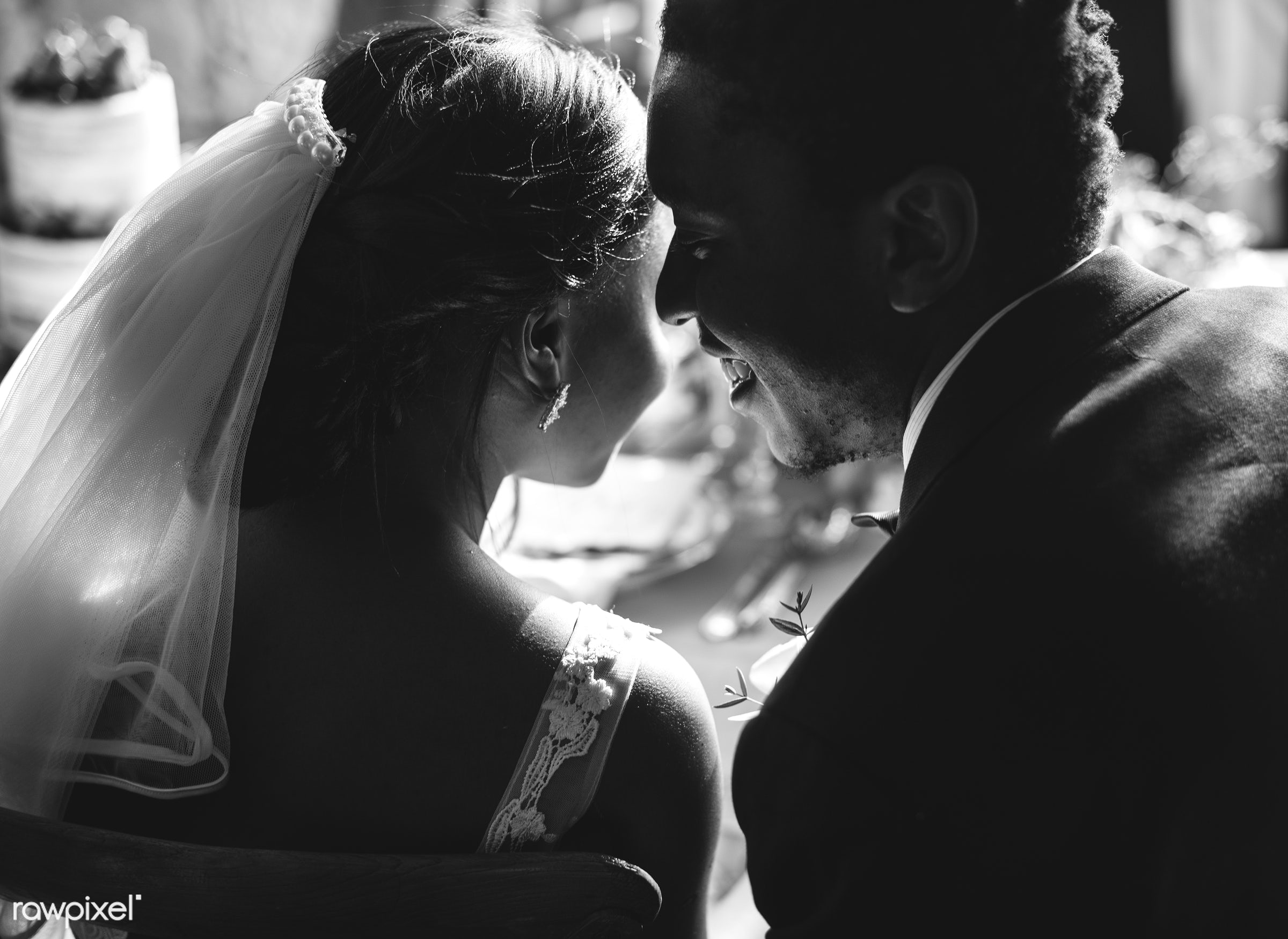 Bridge and groom wedding day - african descent, back, black, bride, celebration, cheerful, communication, connection,...