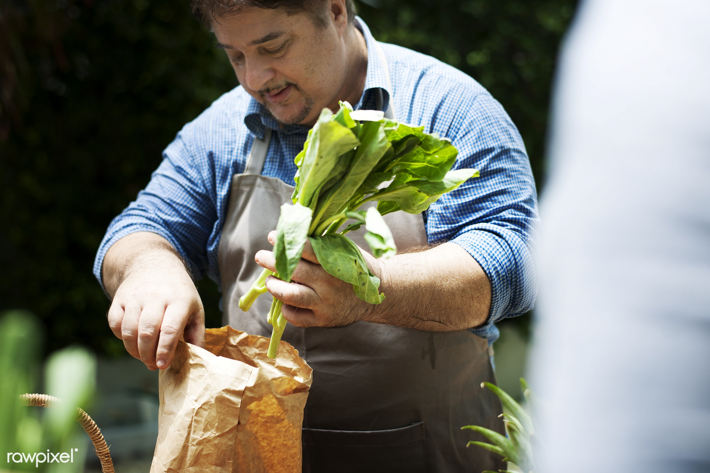 raw, diverse, hispanic, farm, ingredients, farmer, nature, fresh, hands, products, agriculture, variety, organic, paper bag...
