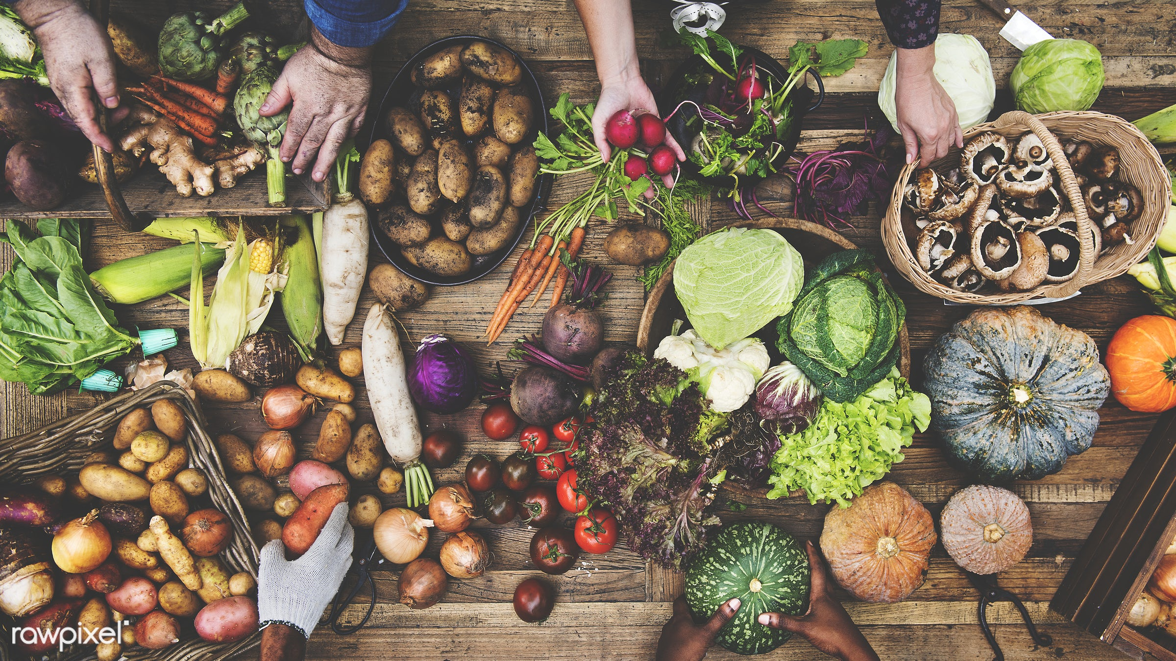 raw, diverse, herbs, farm, ingredients, friends, farmer, nature, fresh, hands, aerial view, products, agriculture, variety,...