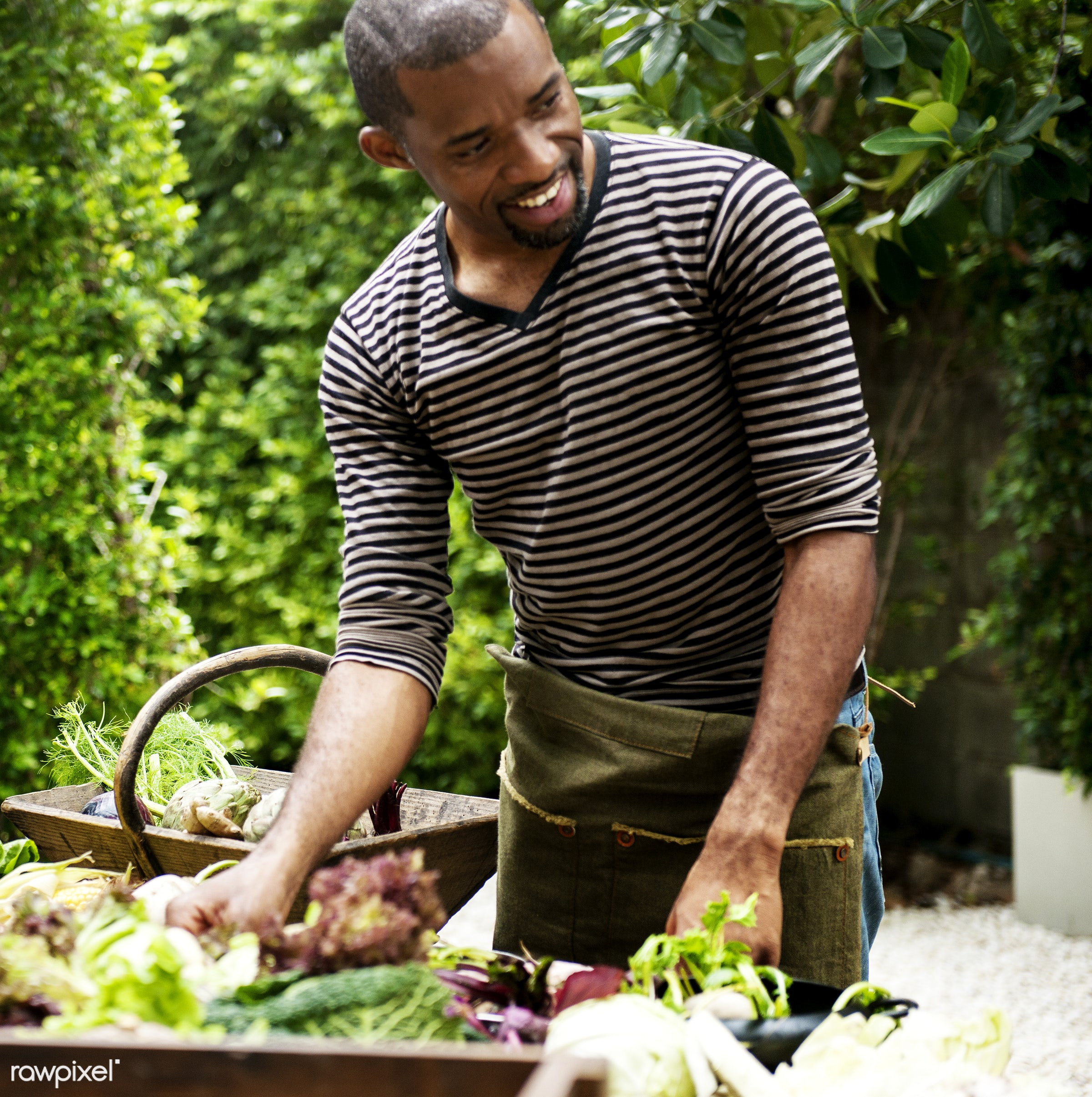 raw, diverse, buy, farm, ingredients, farmer, nature, fresh, choosing, wooden basket, products, african descent, agriculture...