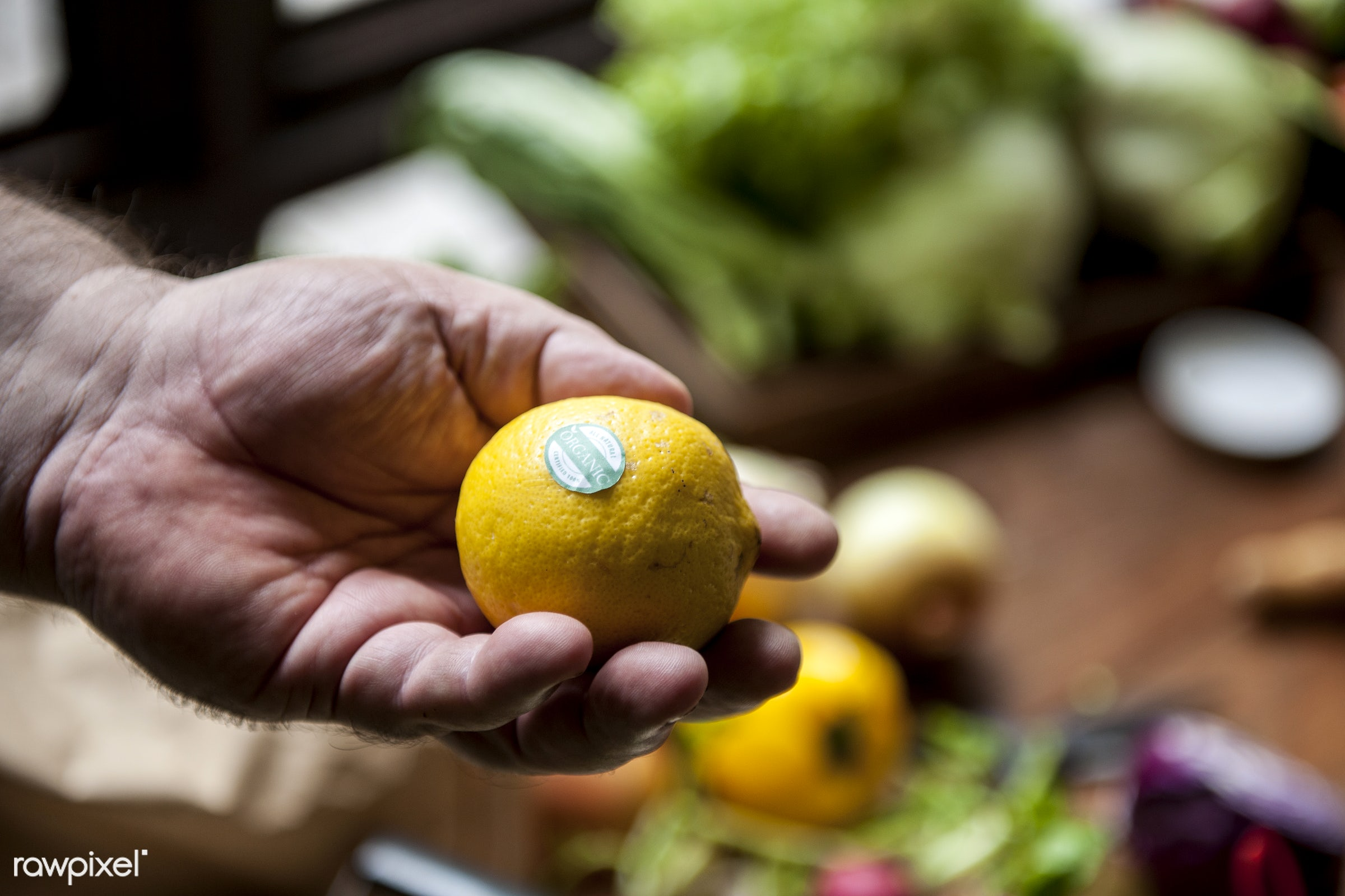raw, diverse, buy, farm, ingredients, farmer, nature, hands, fresh, choosing, products, closeup, agriculture, variety,...