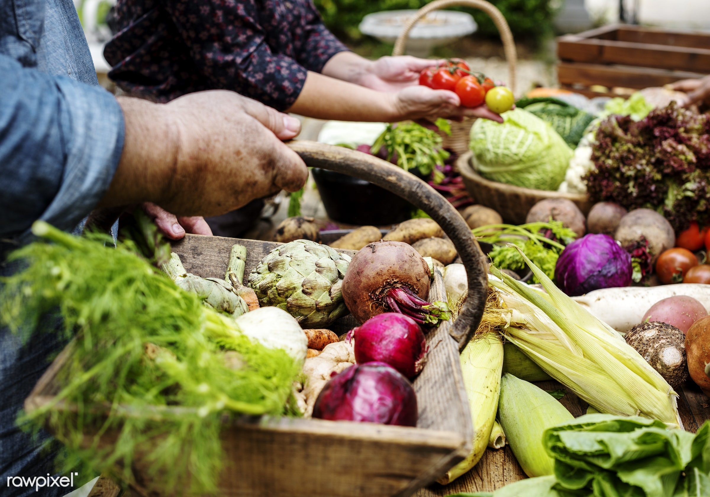 raw, diverse, herbs, farm, ingredients, nature, farmer, fresh, hands, products, agriculture, variety, organic, market, food...