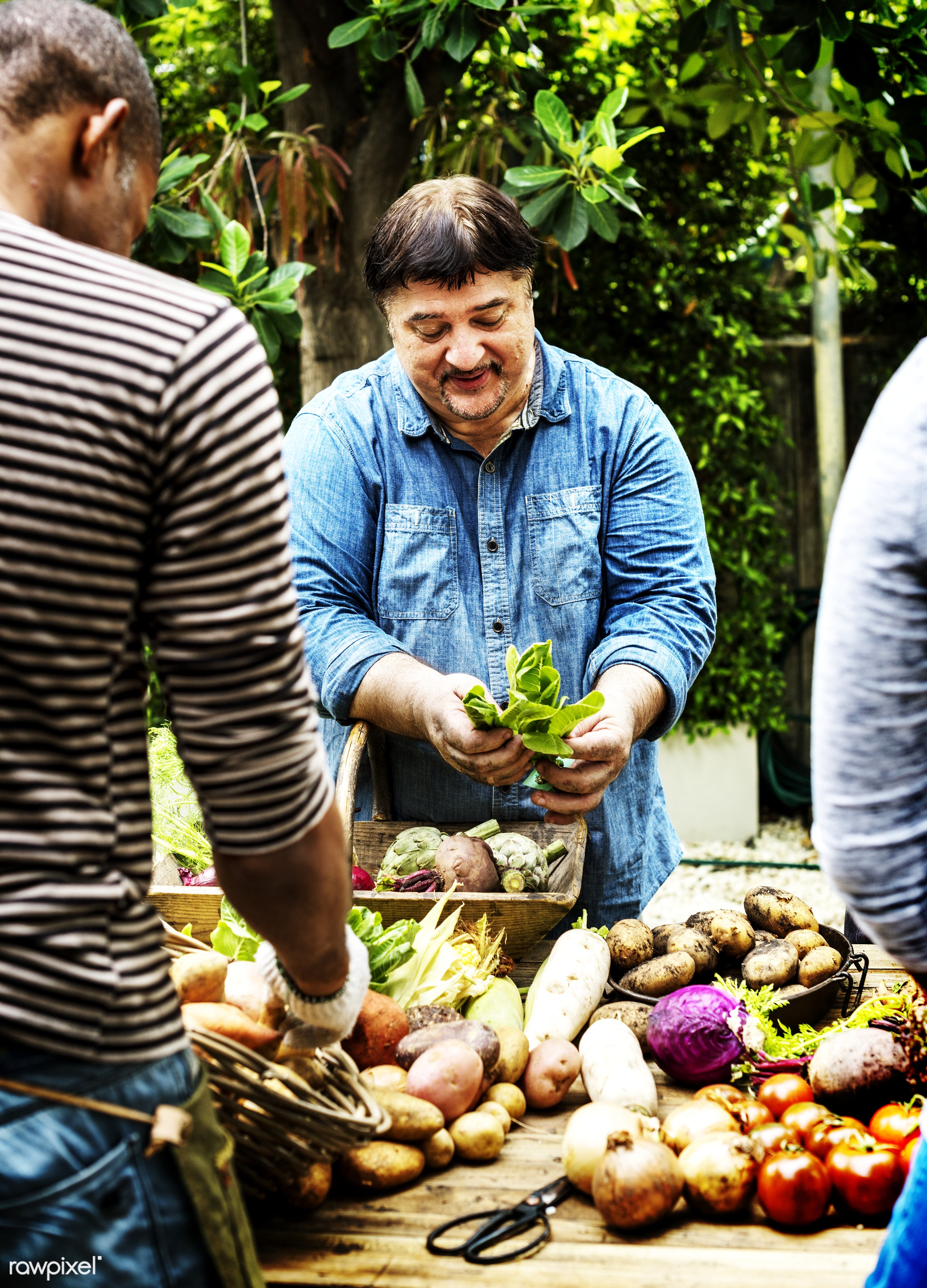 Buyers and sellers at buyers market - raw, diverse, herbs, hispanic, caucasian, farm, ingredients, friends, nature, farmer,...