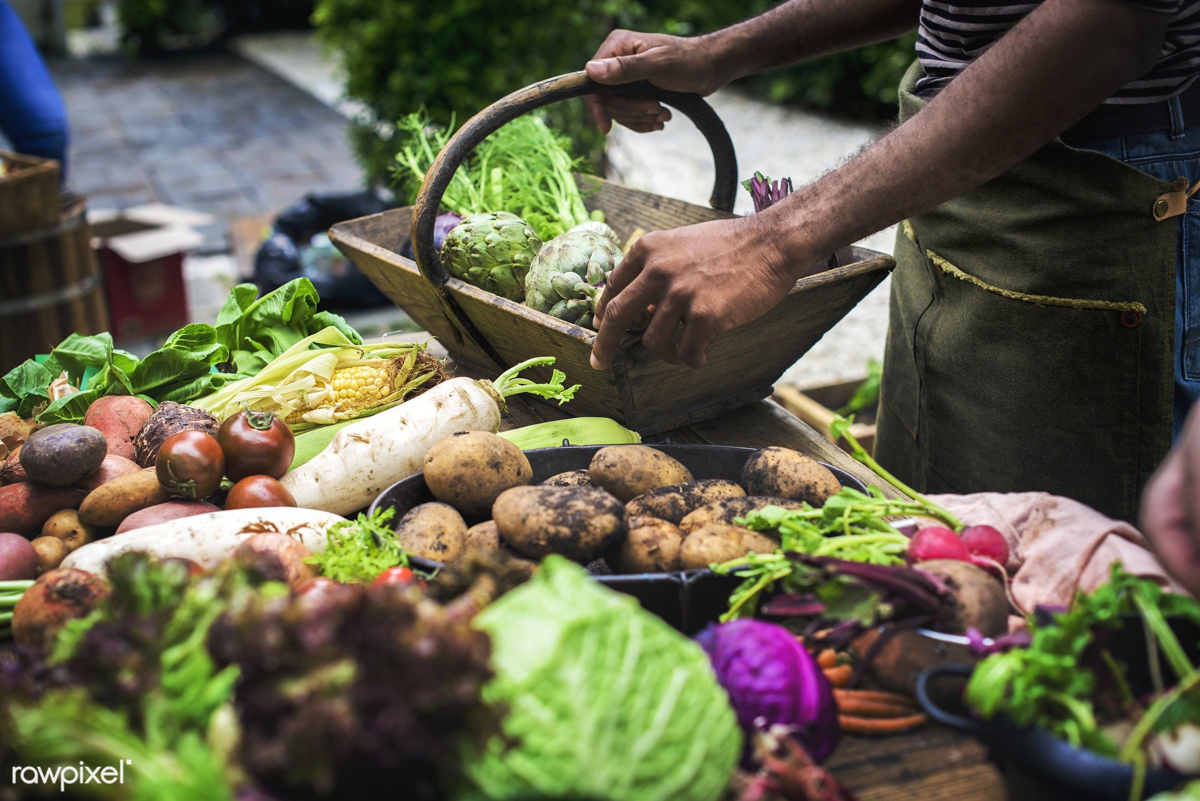 cuisine, variation, selecting, gastronomy, type, kind, ingredients, hands, buying, veggie, gourmet, selling, wooden bucket,...