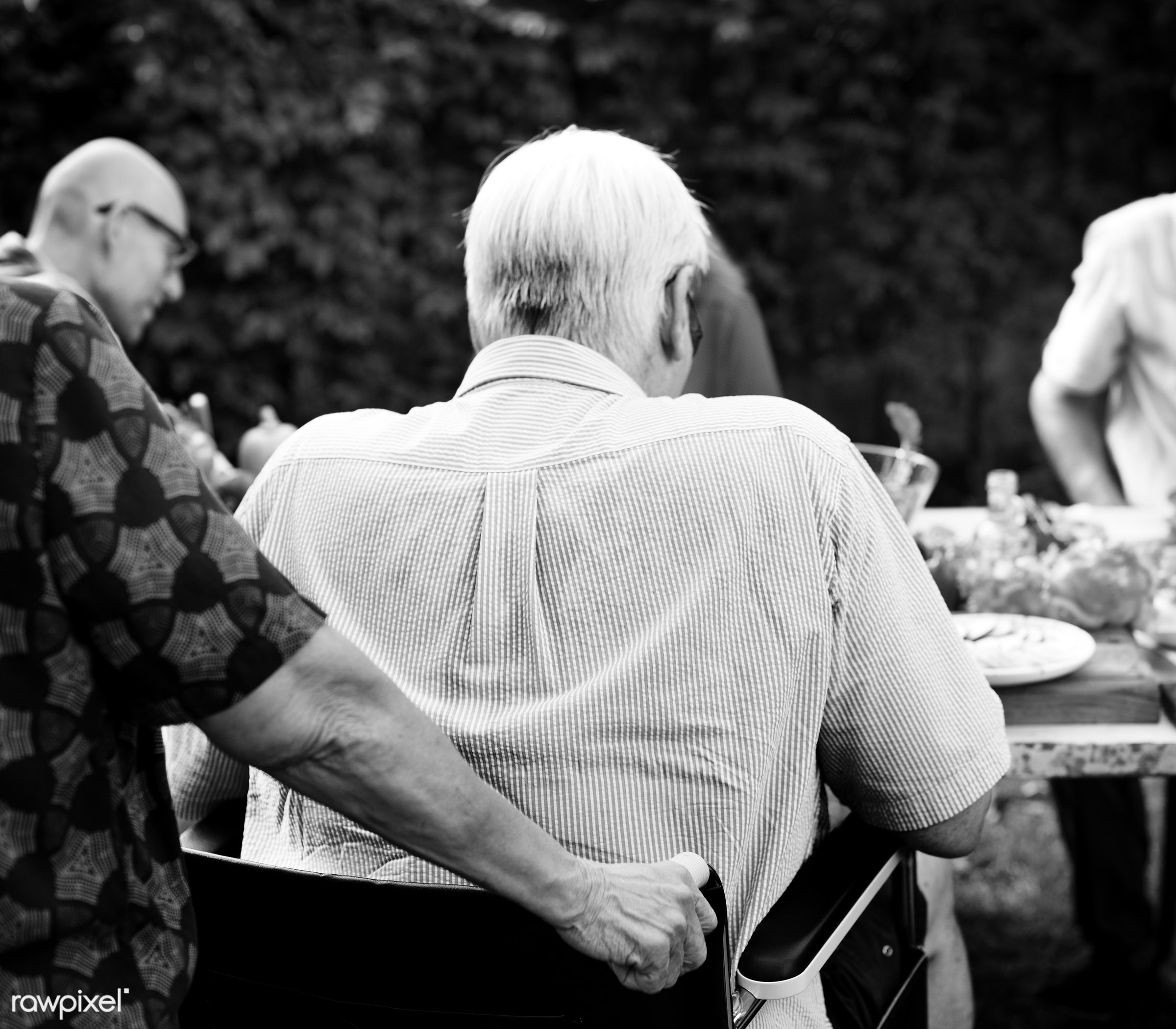 old, lawn, yard, relax, party, people, together, friends, wheelchair, disability, disable, closeup, man, handicapped,...
