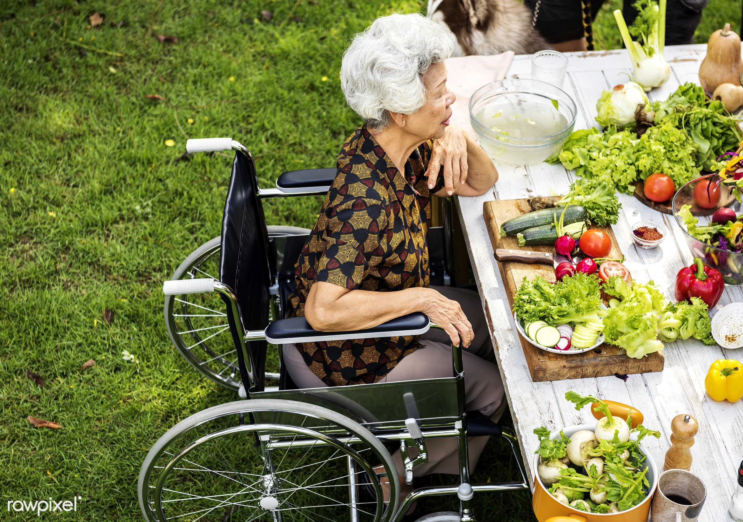 old, lawn, yard, party, fresh, wheelchair, woman, disability, various, disable, healthcare, handicapped, support, grass,...