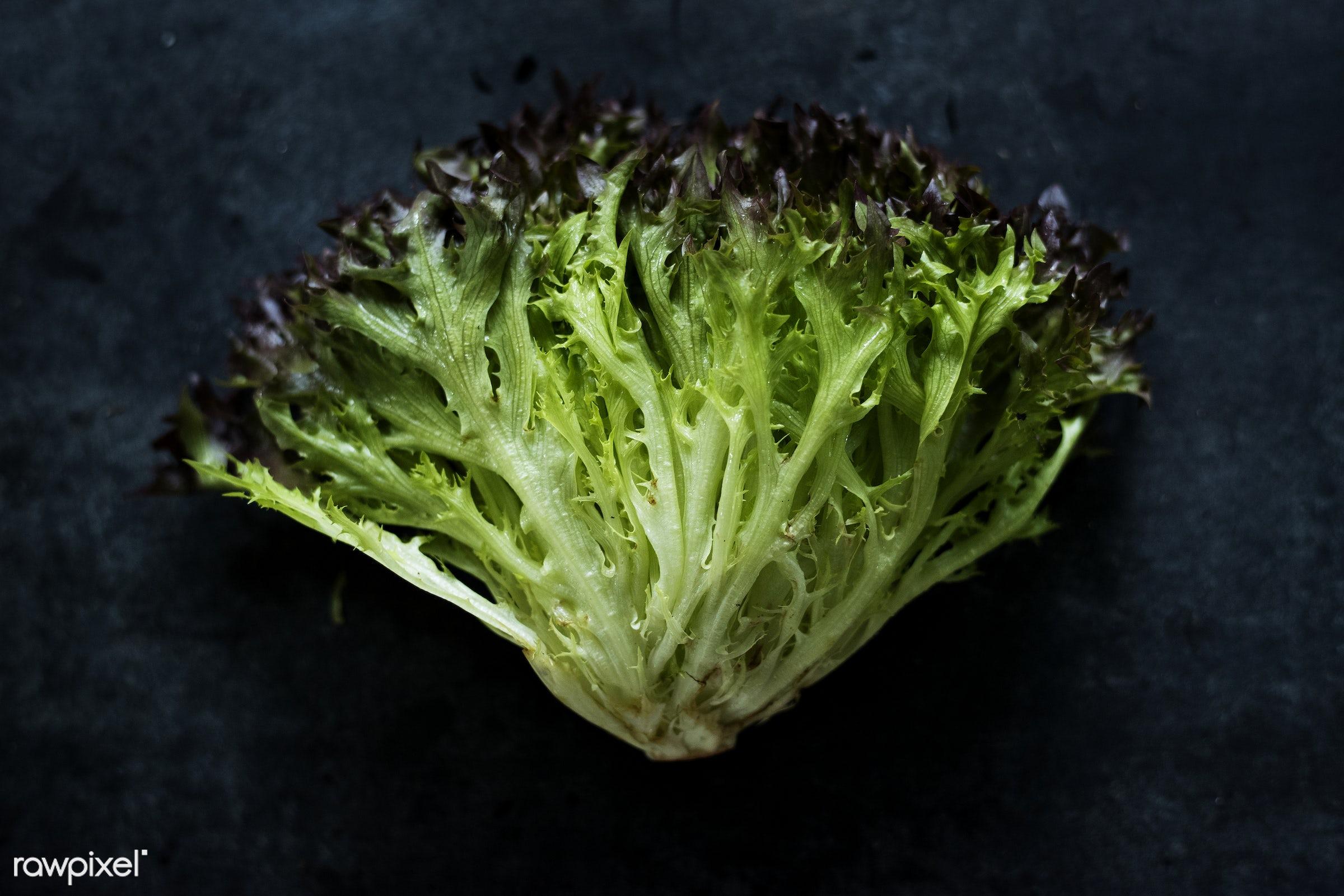Fresh organic red leaf lettuce macro shot - salad, raw, nobody, leaves, black background, real, red leaf, organic, nature,...