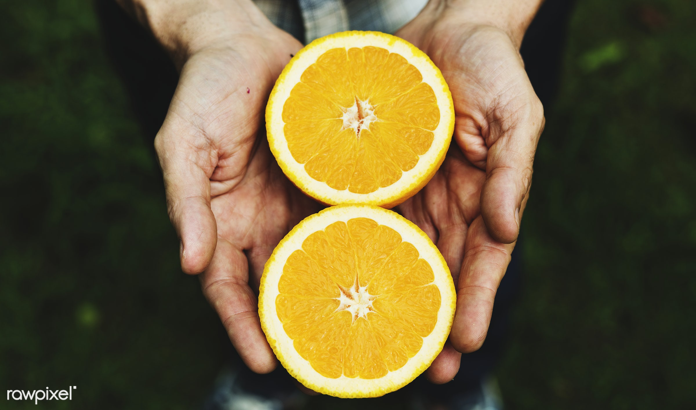 plant, raw, cuisine, holding, crop, nature, fresh, hands, pick, ingredient, cultivation, closeup, orange, product, picking,...