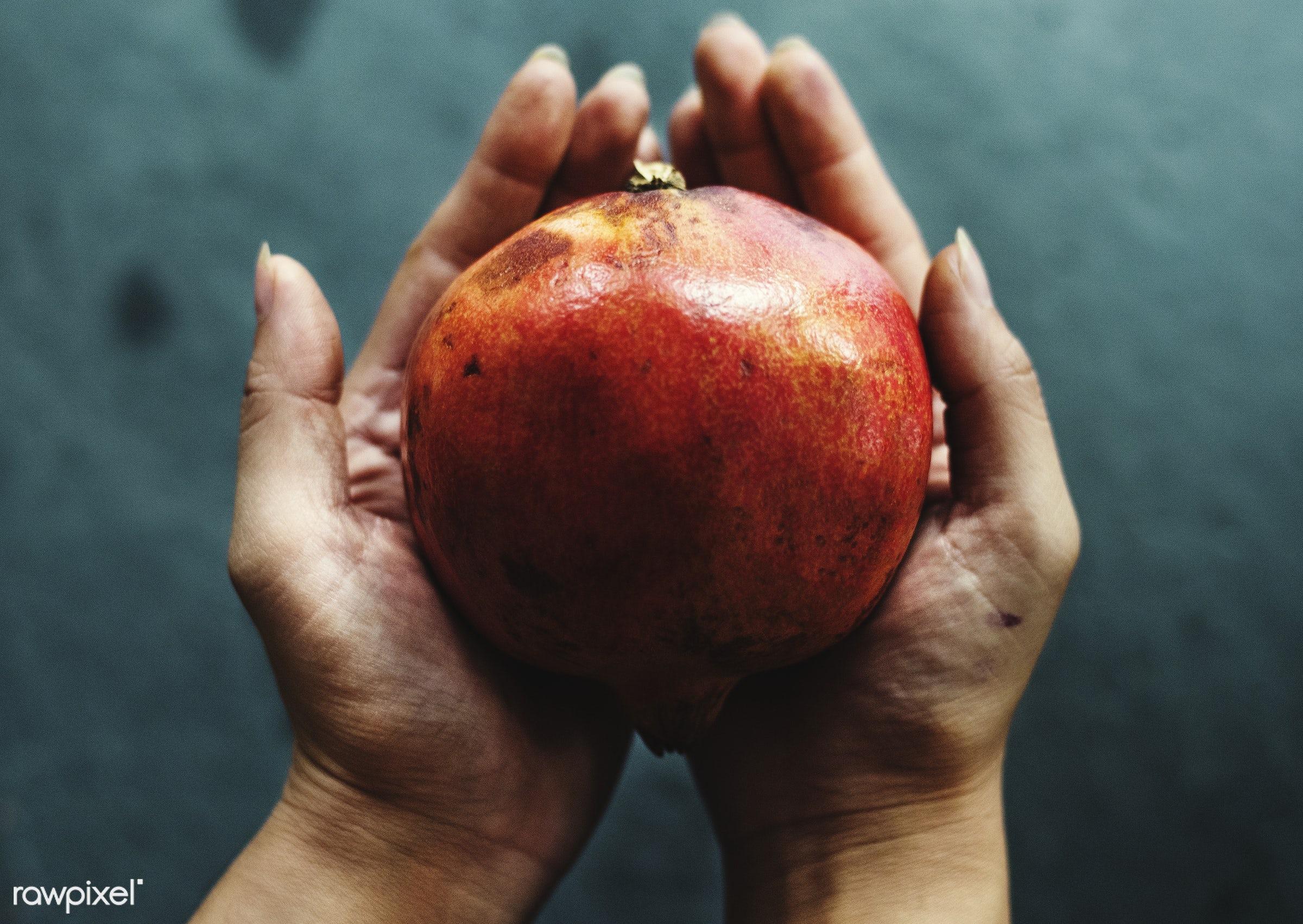 Fresh pomegranate fruit - raw, pomegranate, holding, nature, hands, fresh, closeup, fruit, organic, healthy, harvest,...