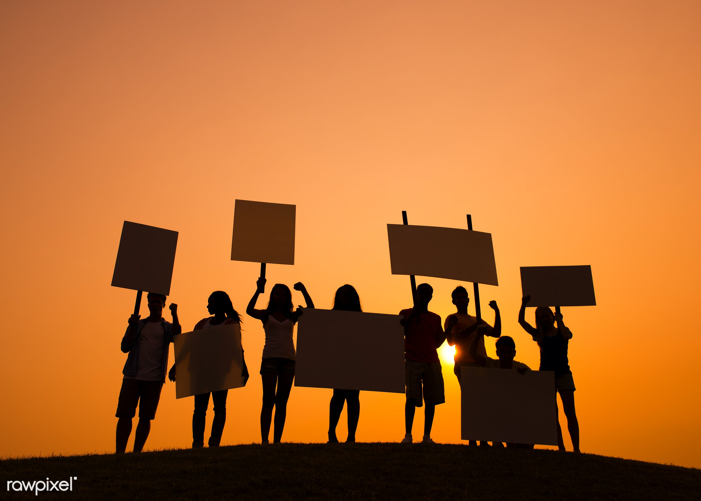 protest, action, alertness, anger, complaining, conflict, displeased, dusk, furious, group of people, holding, in a row,...