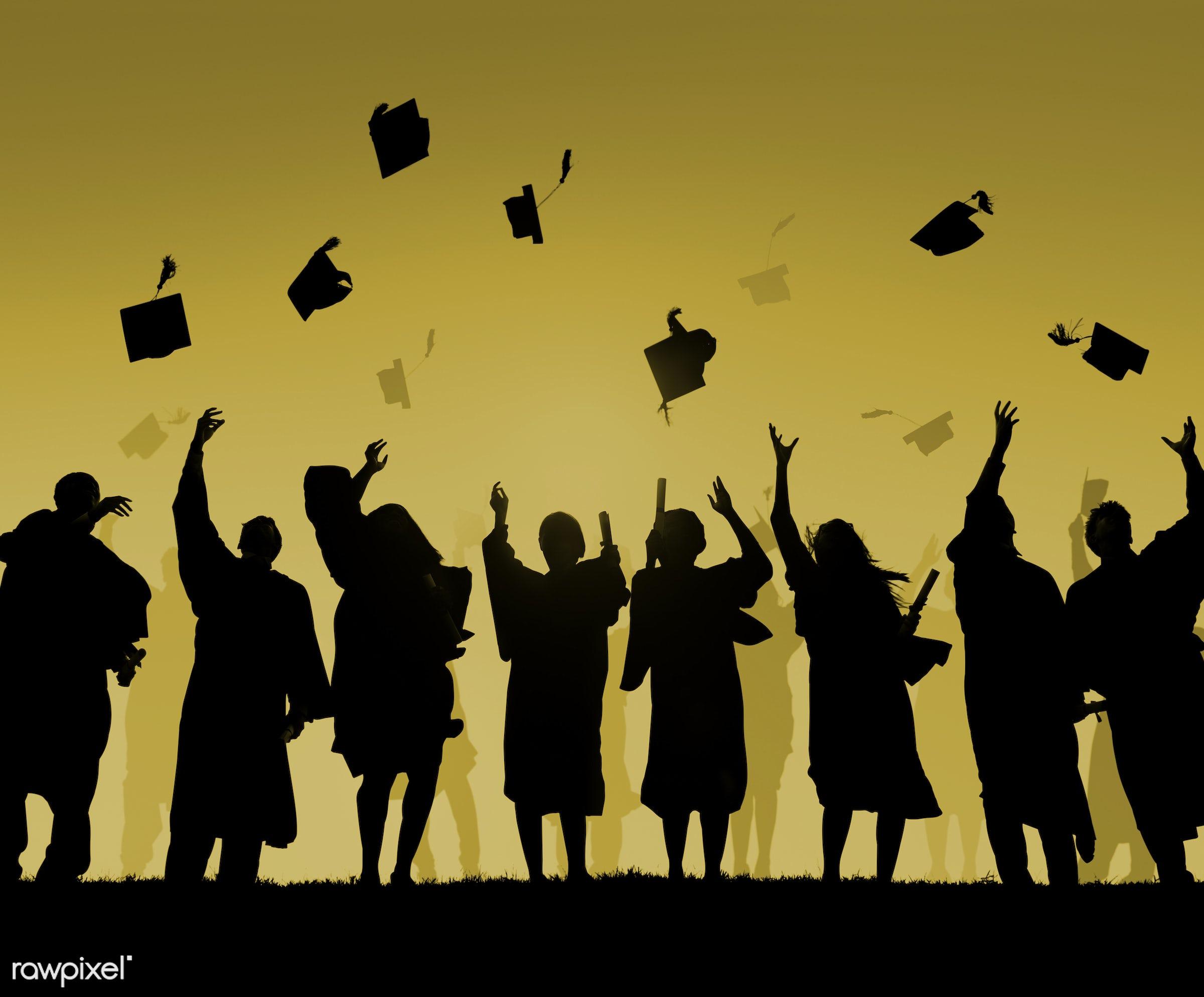 hat, academic, achievement, african descent, black, campus, cap, celebration, ceremony, certificate, cheerful, college,...