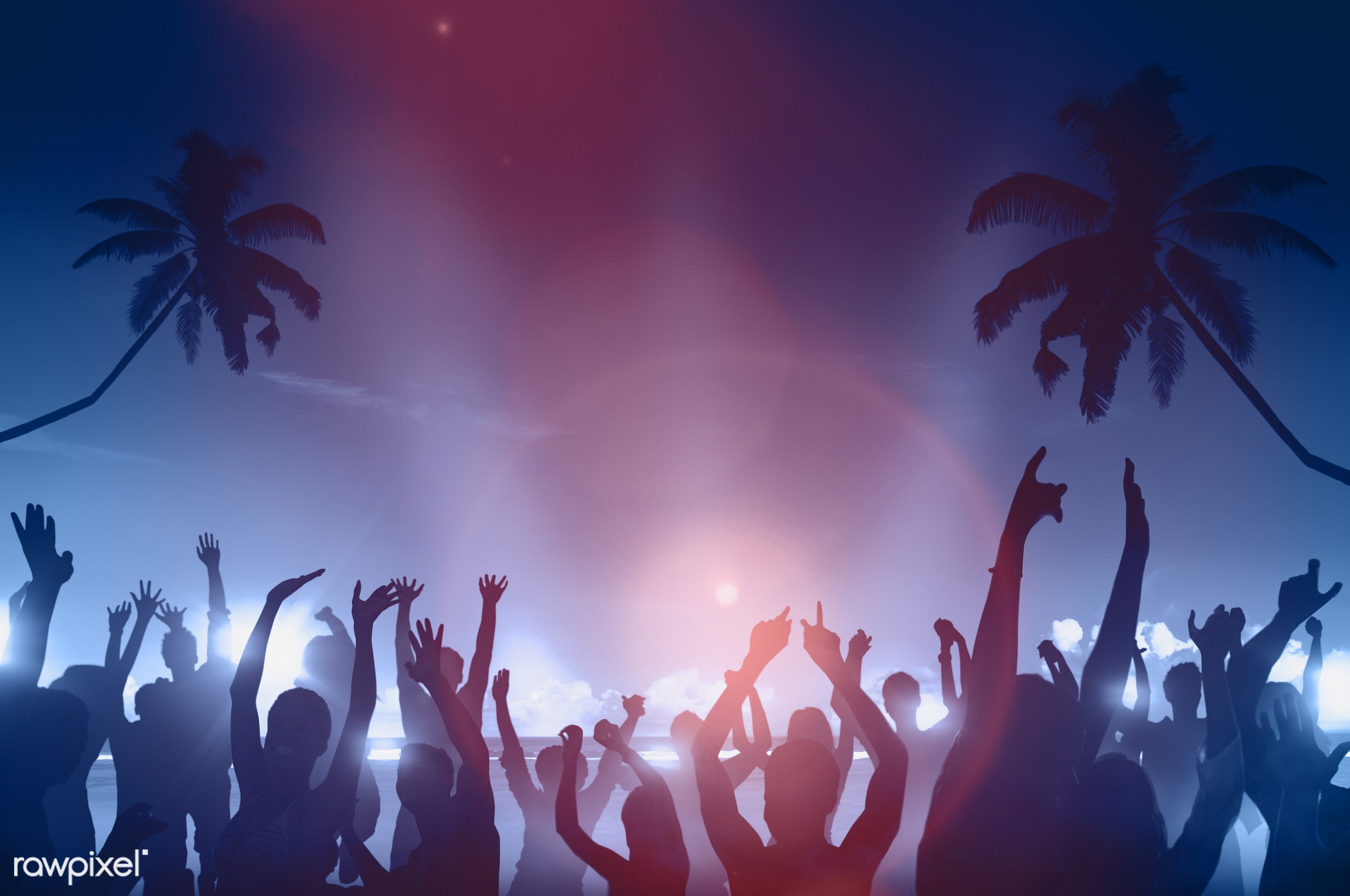 dusk, arms outstretched, arms raised, back lit, beach, beer, celebration, coconut palm tree, community, copy space, crowd,...