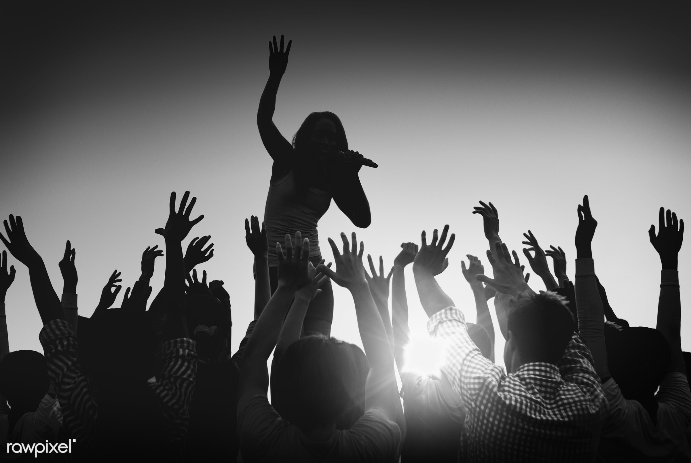white, arms raised, artist, audience, back lit, black and white, carefree, celebration, cheerful, community, concert, crowd...