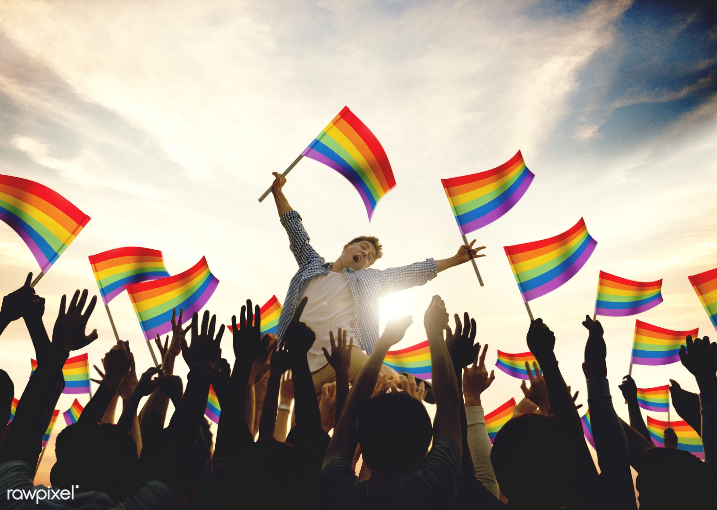gay, pride, adult, arm raised, audience, back lit, celebration, cheerful, community, couple, crowd, culture, ecstatic,...