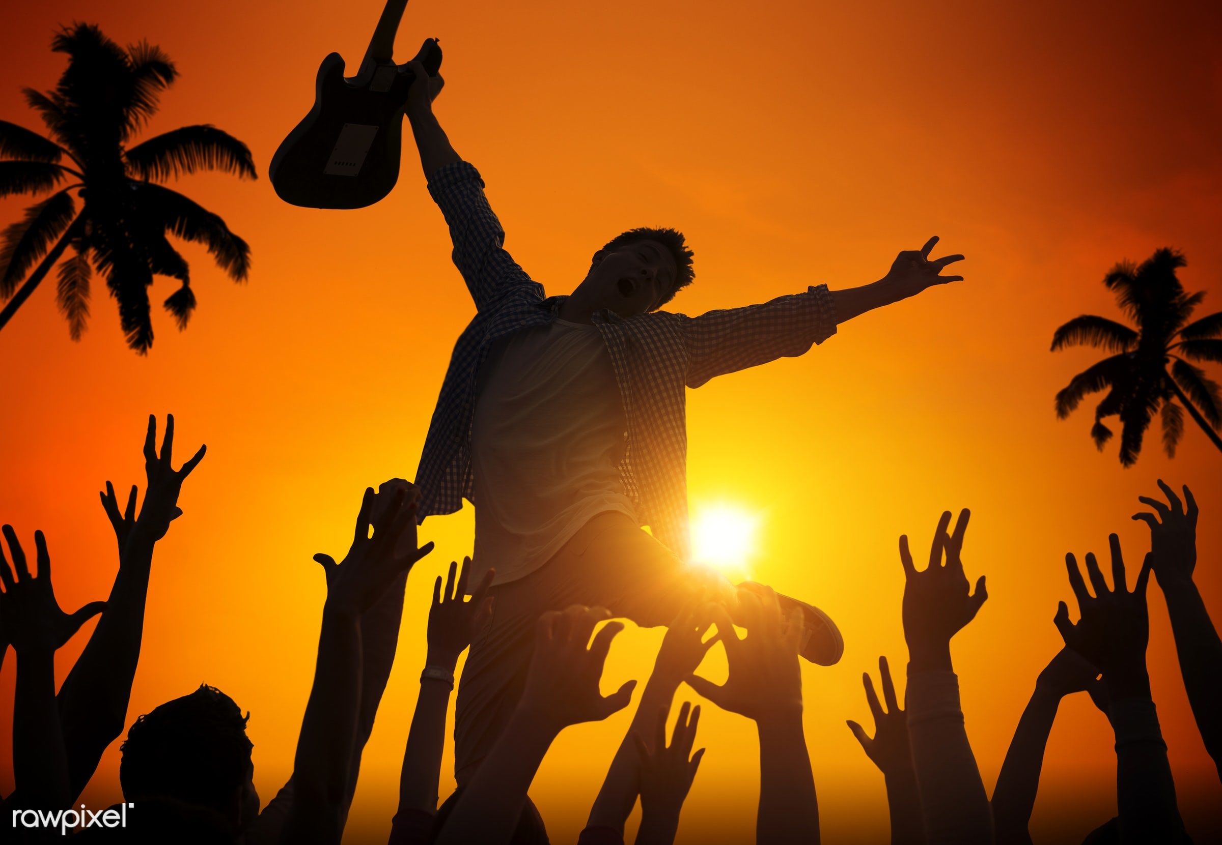 beer, alcohol, applauding, arms outstretched, arms raised, audience, back lit, beach, blue, celebration, coconut palm tree,...