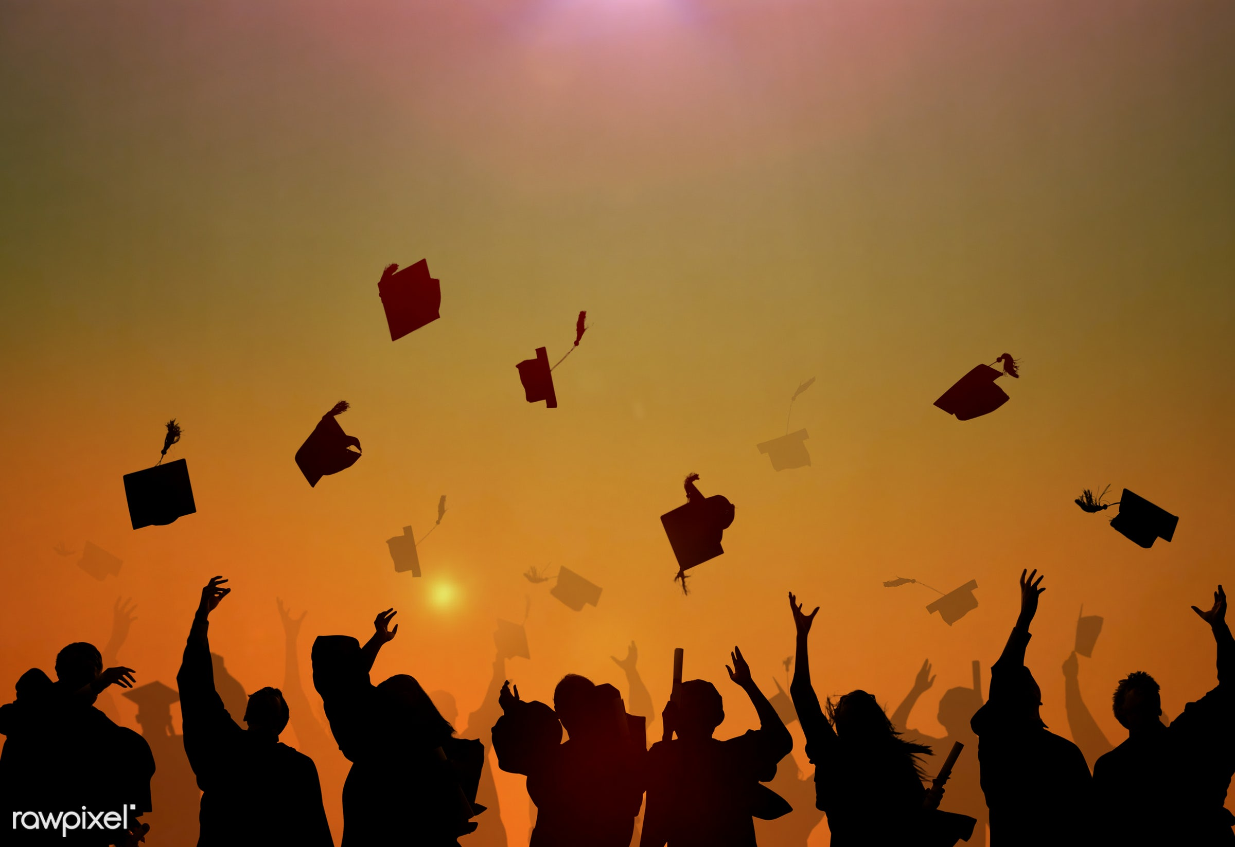 academic, accomplishment, achievement, african descent, african ethnicity, black, campus, cap, celebration, ceremony,...