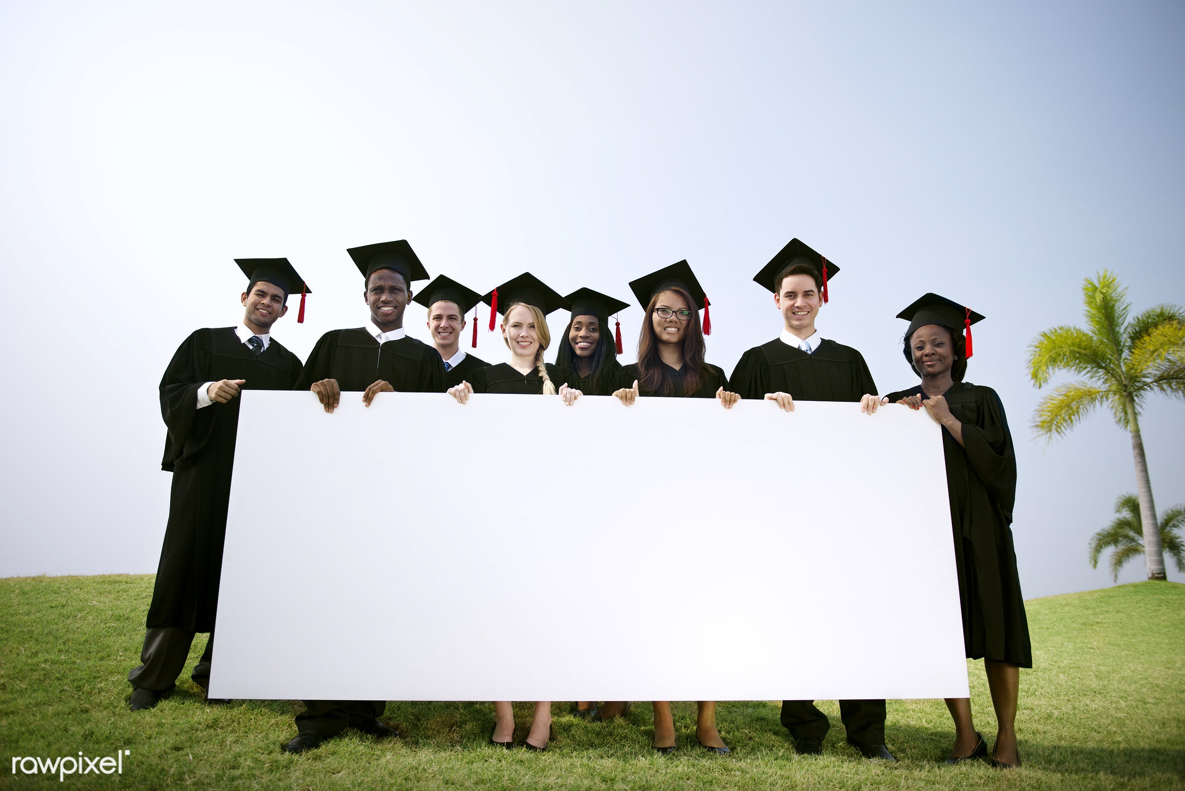 african american, african descent, asian ethnicity, black, blank, board, campus, cap, cheerful, college, copy space, degree...