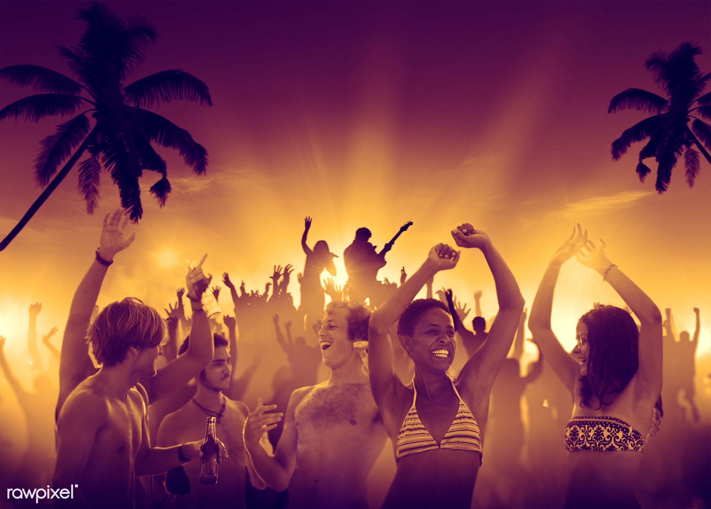 alcohol, applauding, arms outstretched, arms raised, audience, back lit, beach, beer, bikini, cheerful, coconut palm tree,...