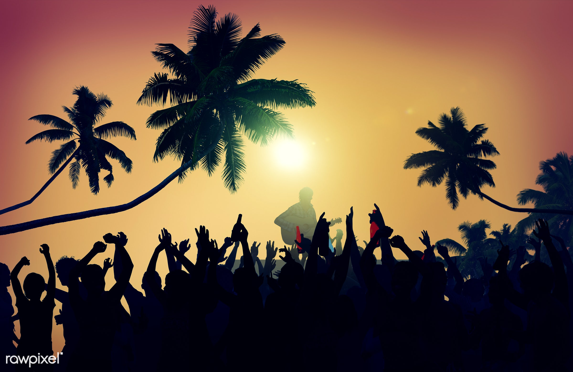 adolescence, audience, back lit, beach, carefree, celebration, cheerful, communication, community, concert, dancing,...