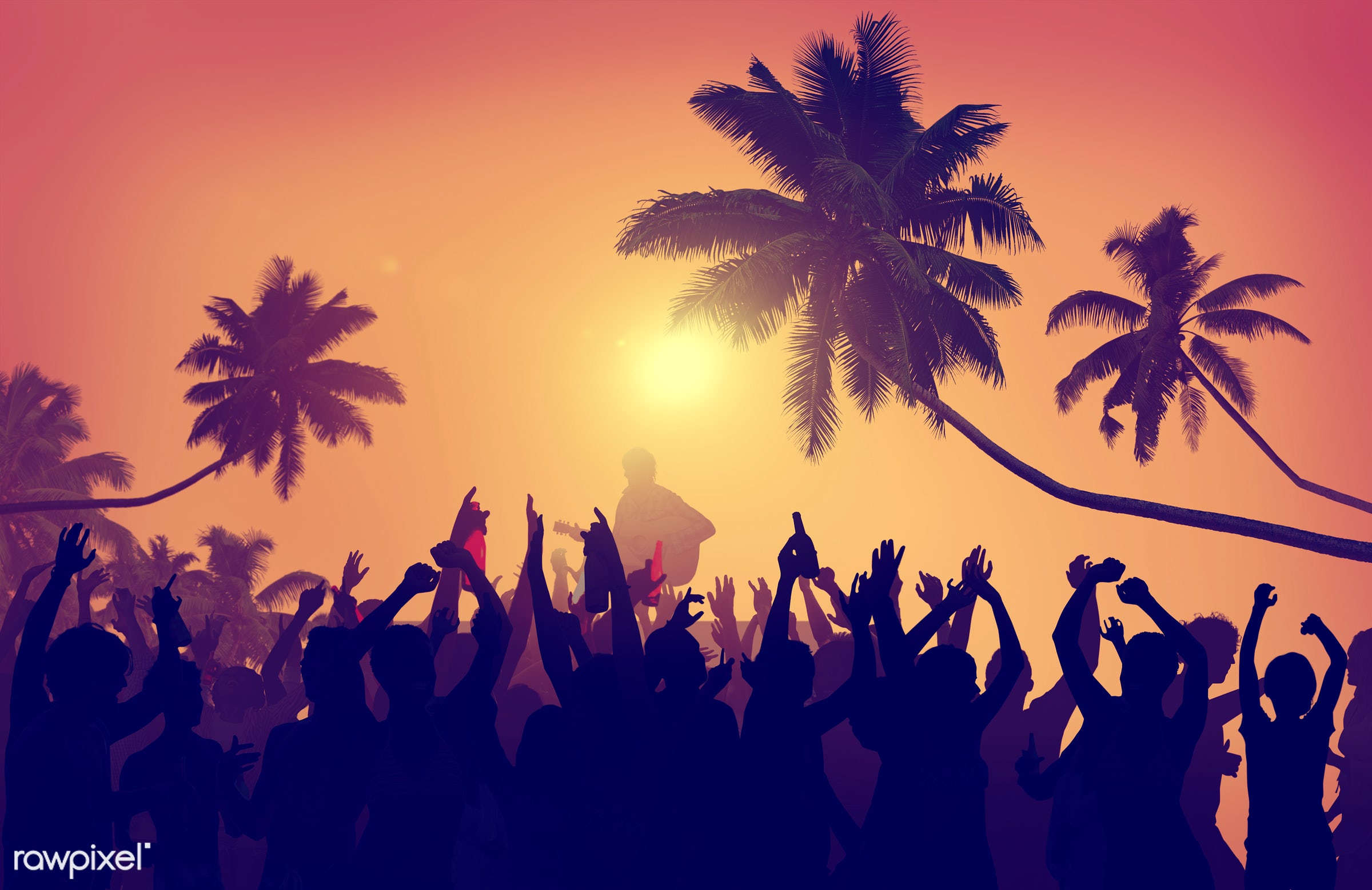 adolescence, audience, back lit, carefree, celebration, cheerful, coconut palm tree, communication, community, concert,...