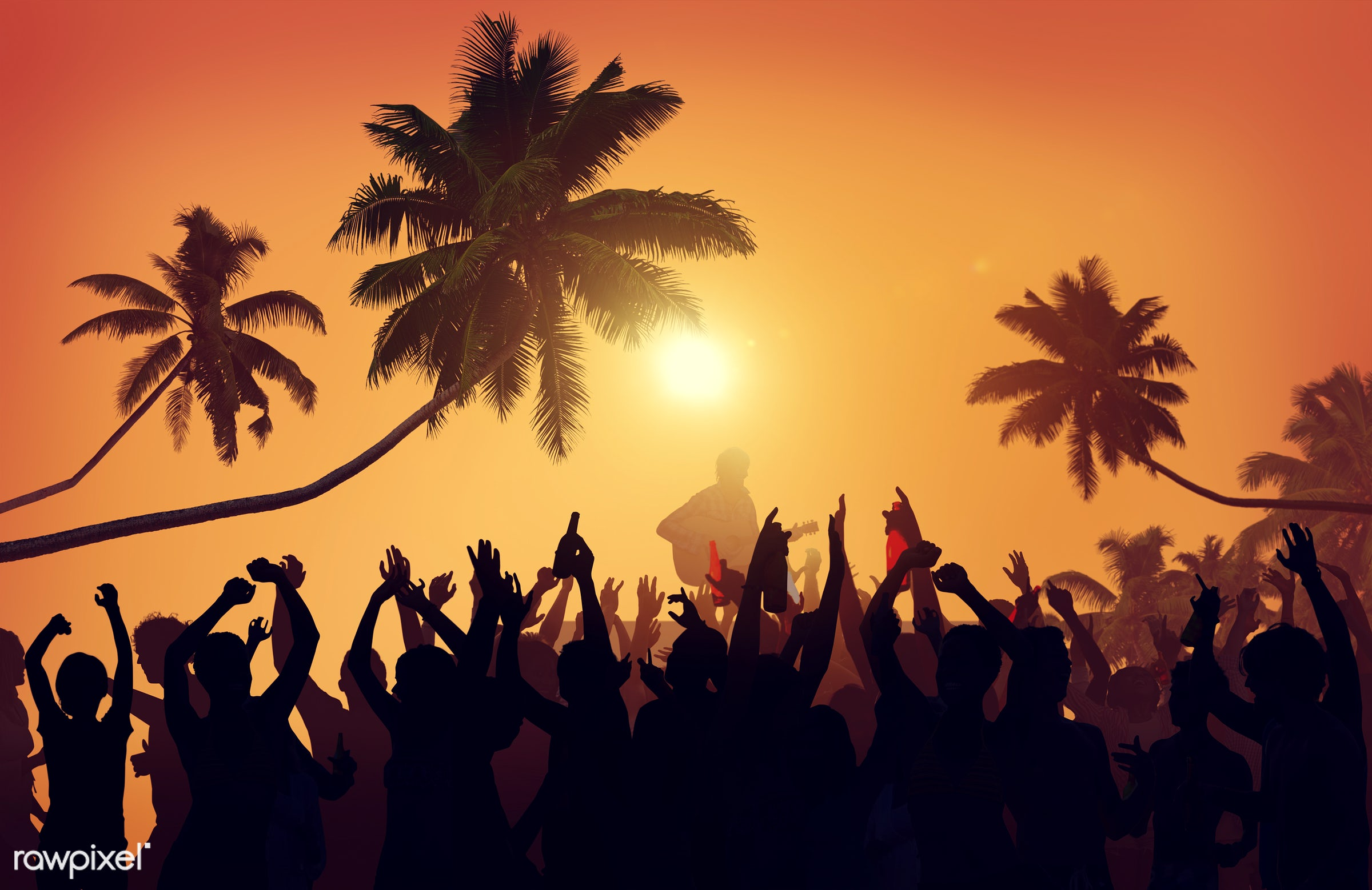 Silhouette of a summer festival - concert, adolescence, audience, back lit, beach, carefree, celebration, cheerful, coconut...