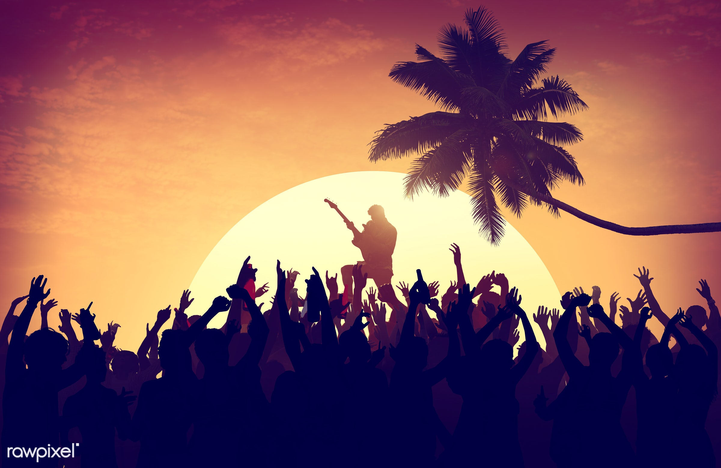 adolescence, audience, back lit, beach, carefree, celebration, cheerful, coconut palm tree, communication, community,...